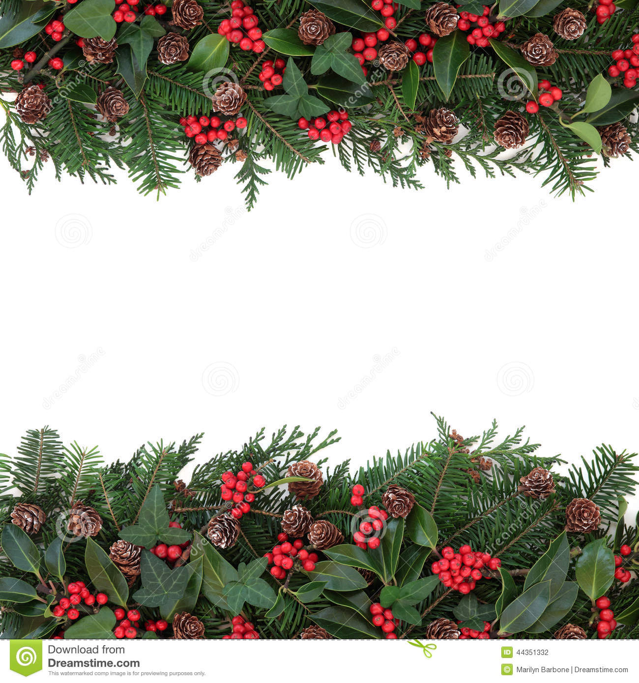 Winter floral border stock photo image