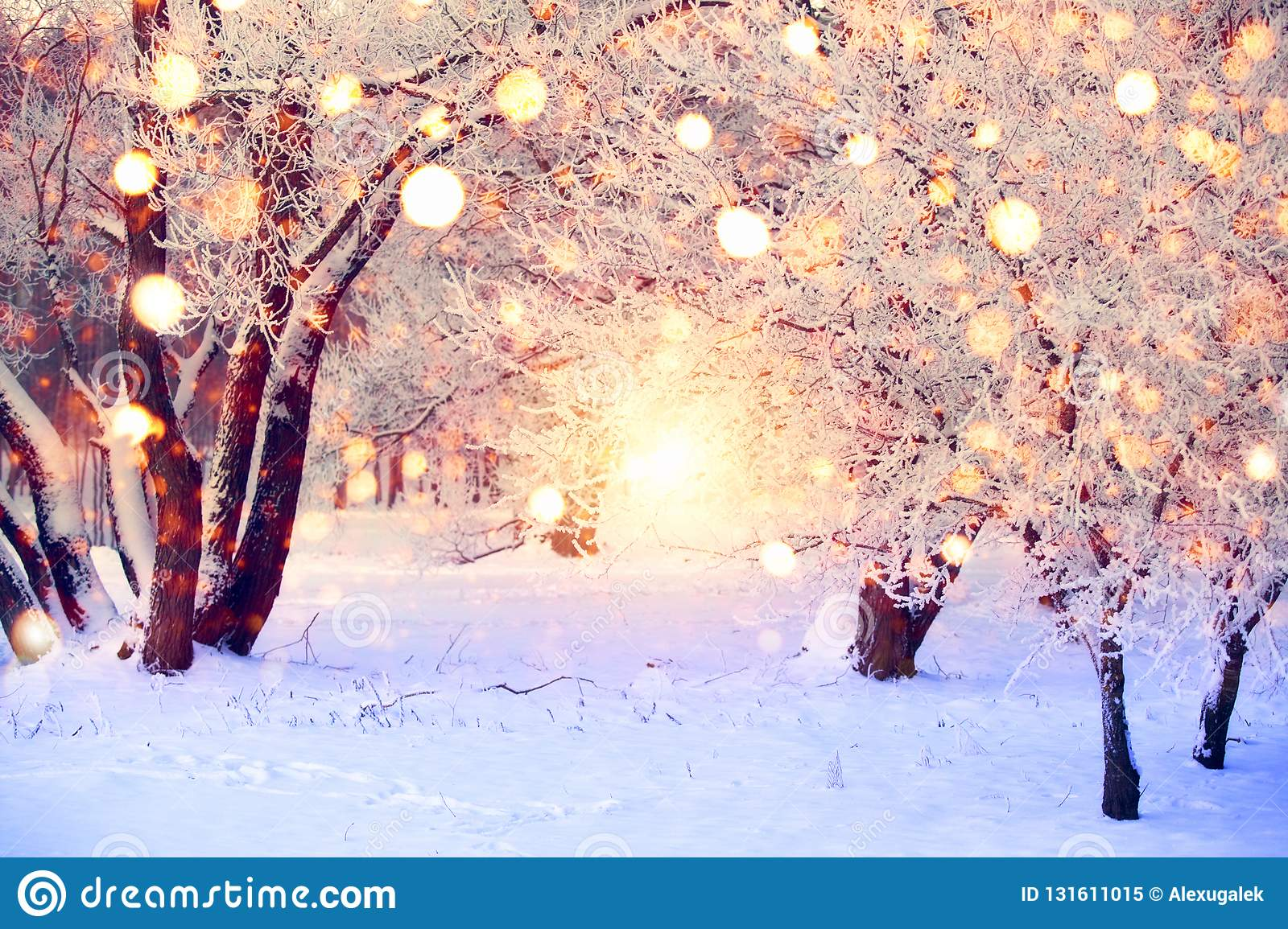 Winter Forest With Colorful Snowflakes. Snow Covered Trees