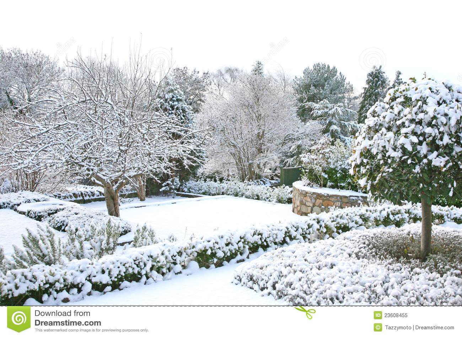 winter garden royalty free stock photo image 23608455. Black Bedroom Furniture Sets. Home Design Ideas