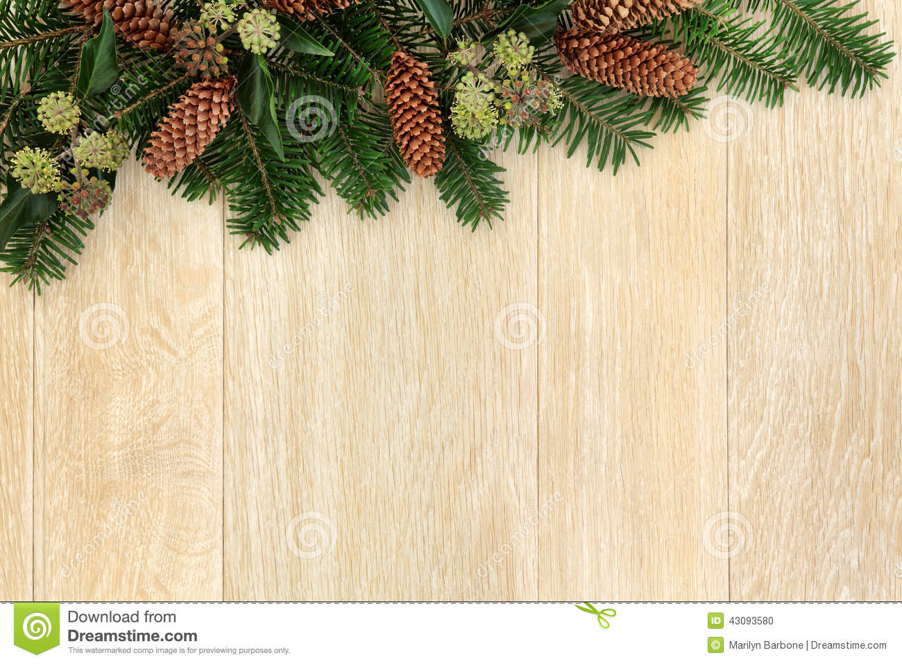 Winter Greenery Border Stock Photo - Image: 43093580