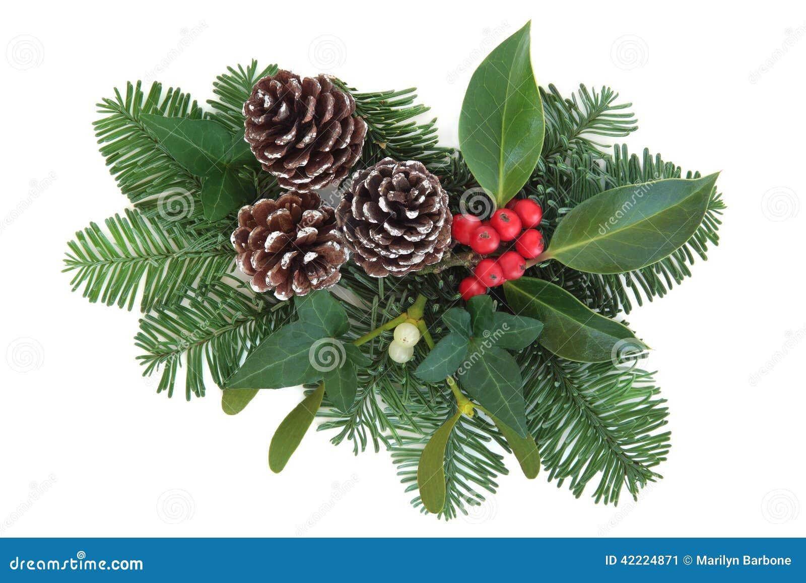 winter greenery stock photo