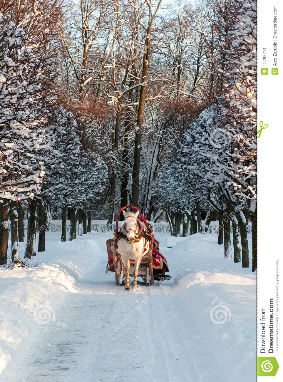 Winter holiday-walk in carriage