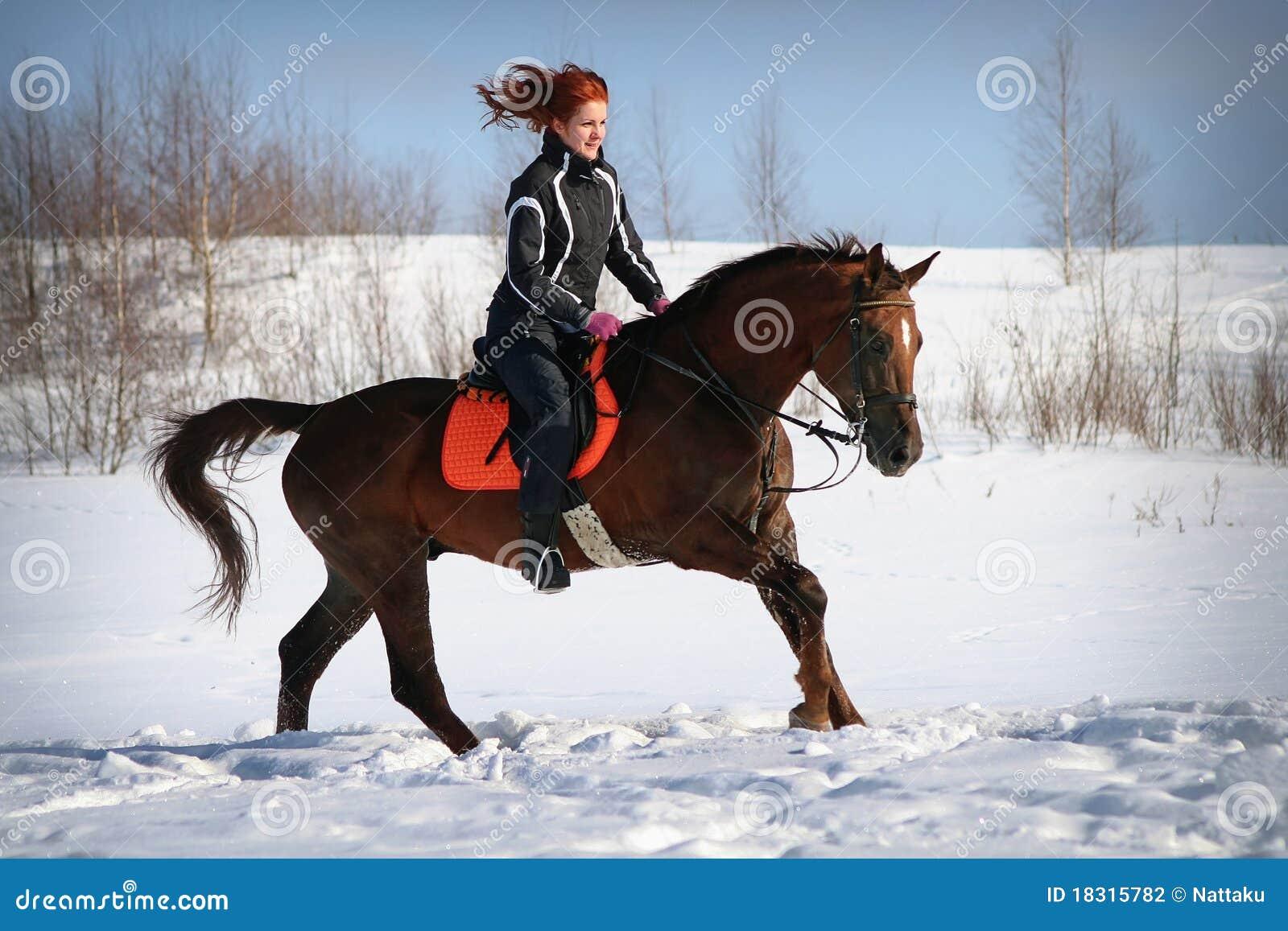 Winter Horse Ride Stock Photo Image Of Mammal Equitation 18315782