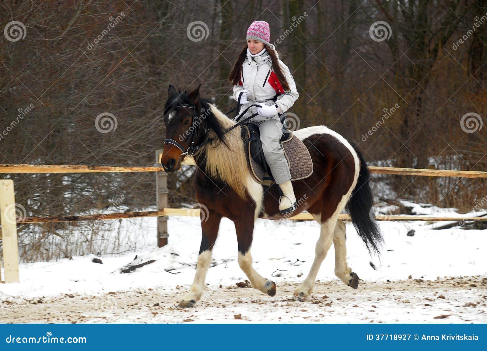 Winter horse rider
