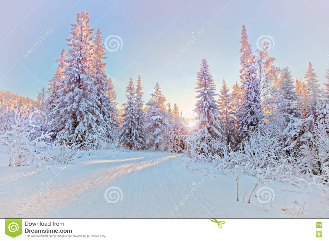 Download Winter landscape stock photo. Image of colorful, illumination - 28316948