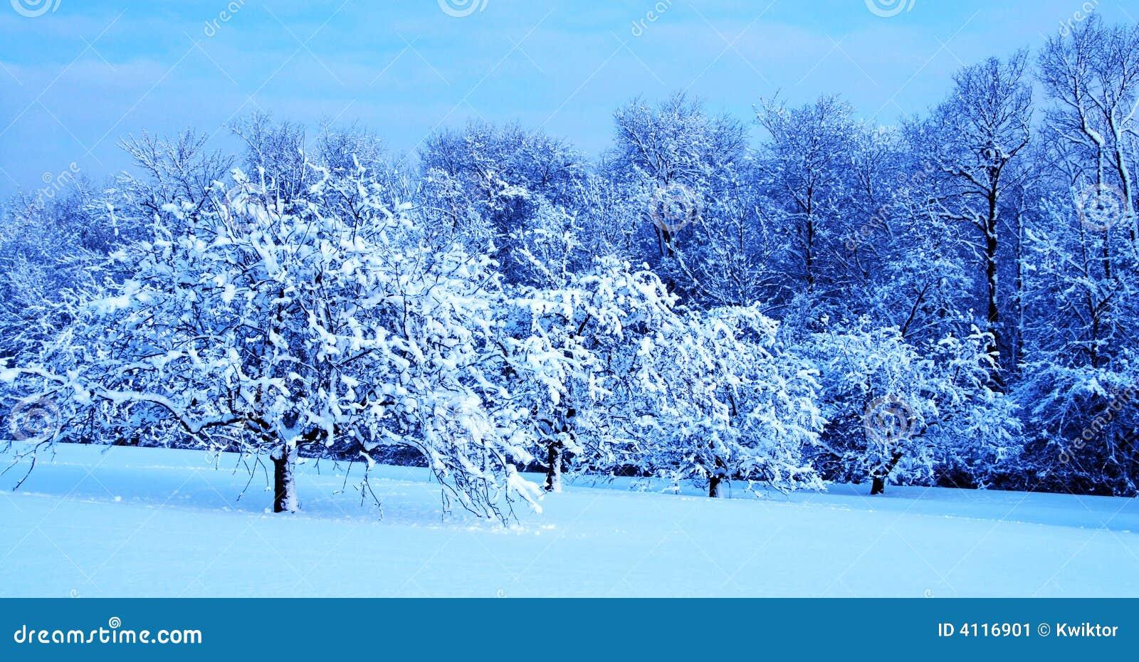 winter landscape stock image image 4116901