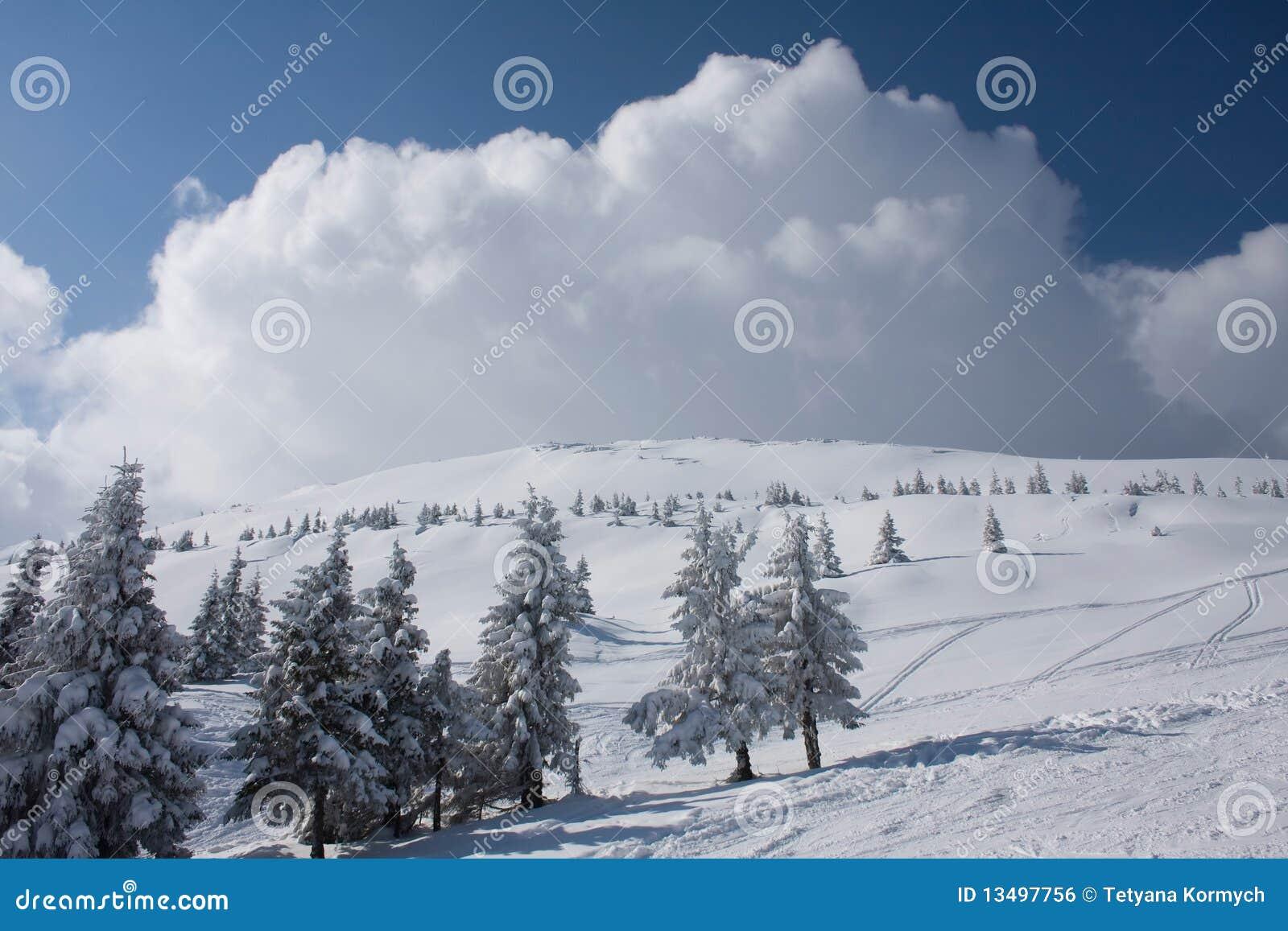 Winter landscape in Carpathians