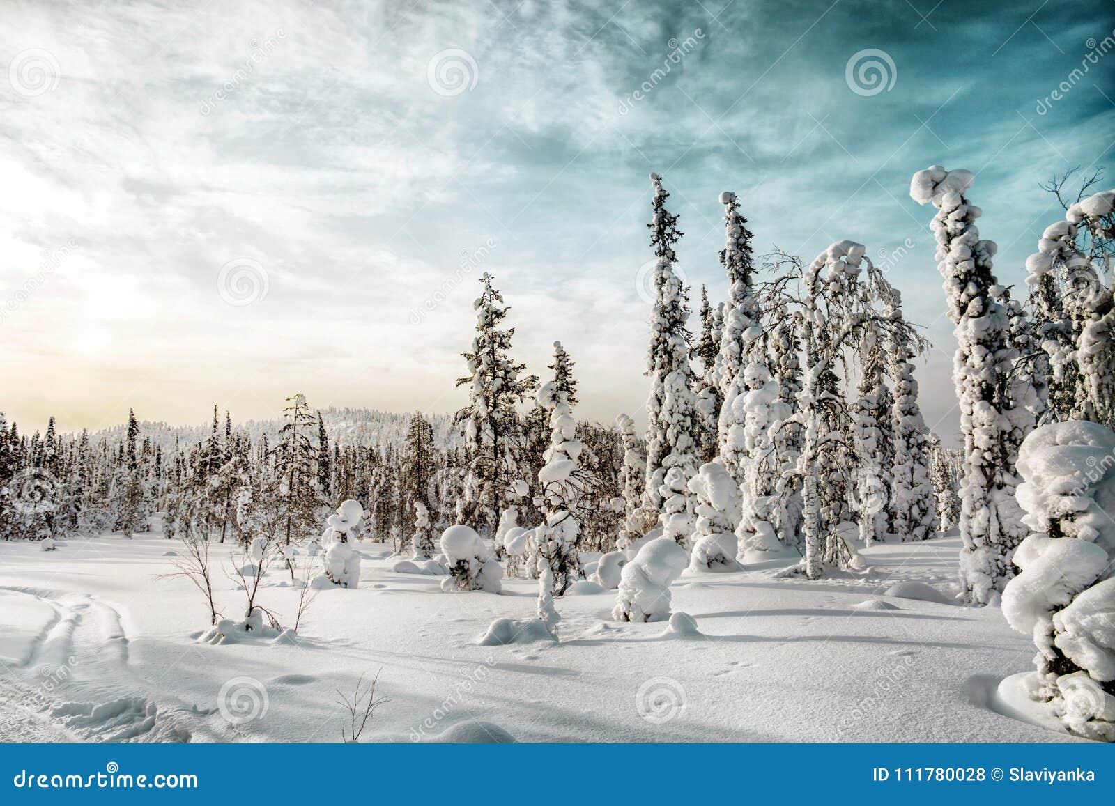 Winter landscape.Karelia. Russia