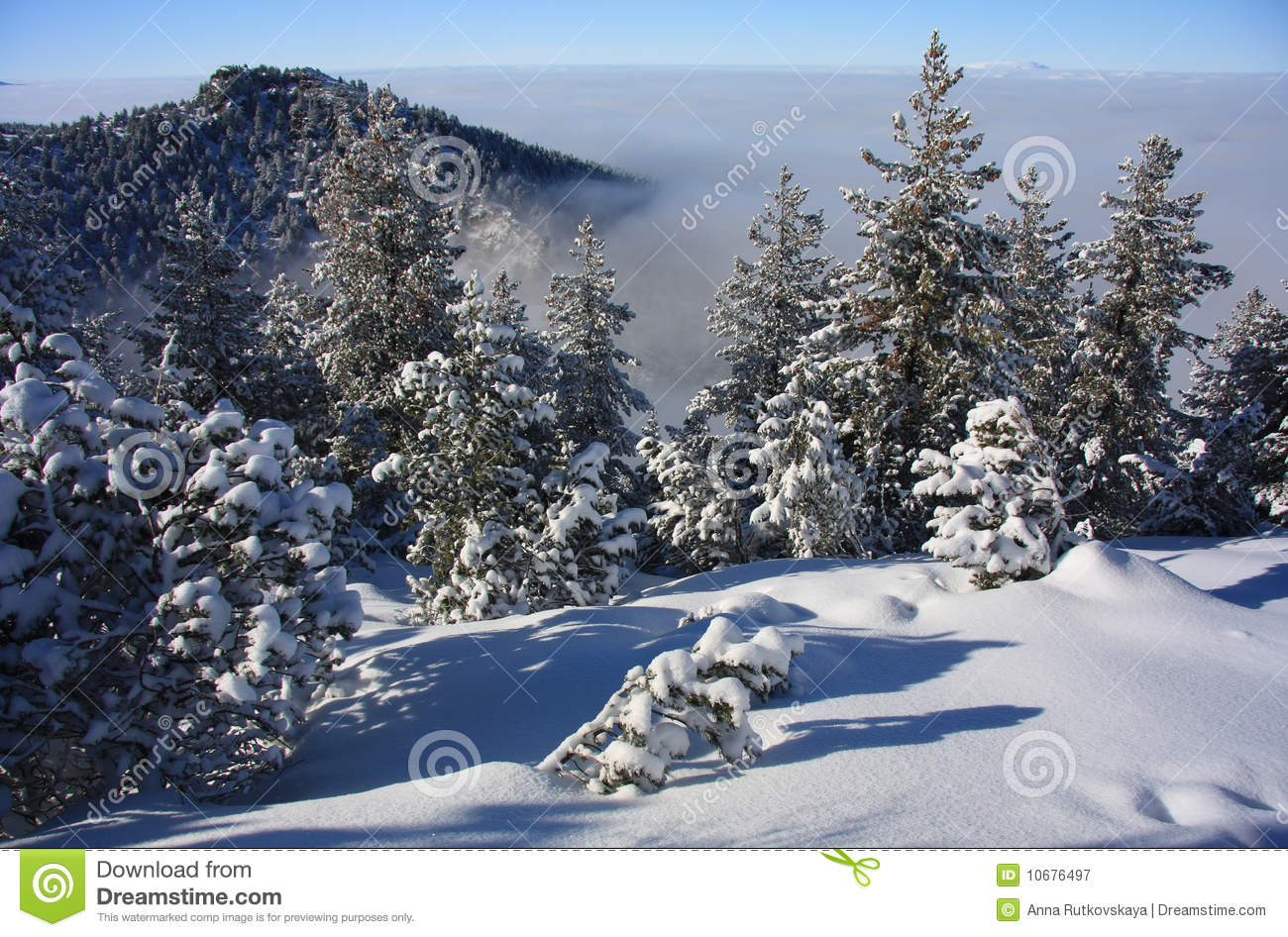 Borovets Bulgaria  city photo : Winter Landscape. Ski Resort Borovets, Bulgaria Royalty Free Stock ...