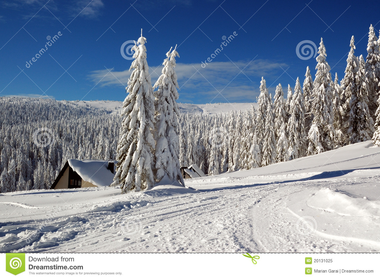 Winter landscape with snow in mountains
