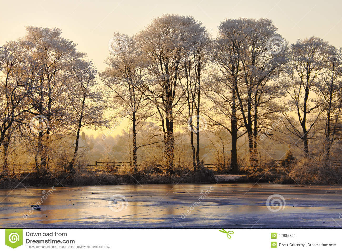 Download Winter landscape at sunset stock photo. Image of sunset - 17985792