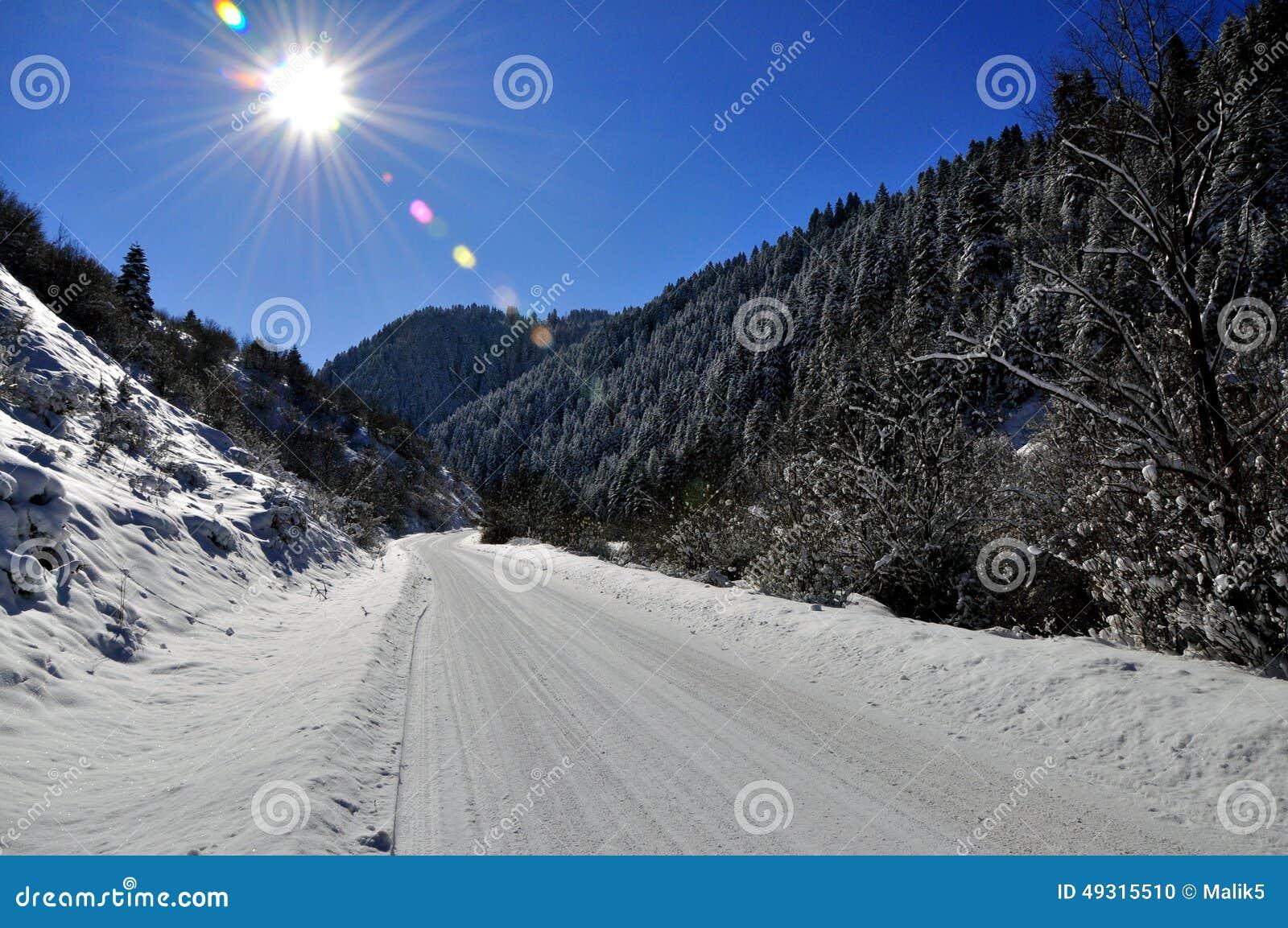 Winter landscep photo