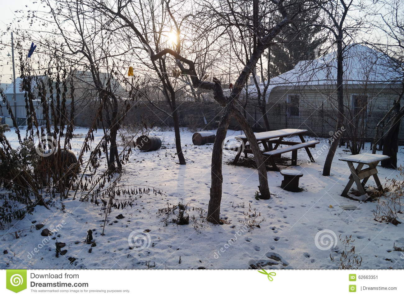 Winter Morning In The Garden Stock Photo Image 62663351