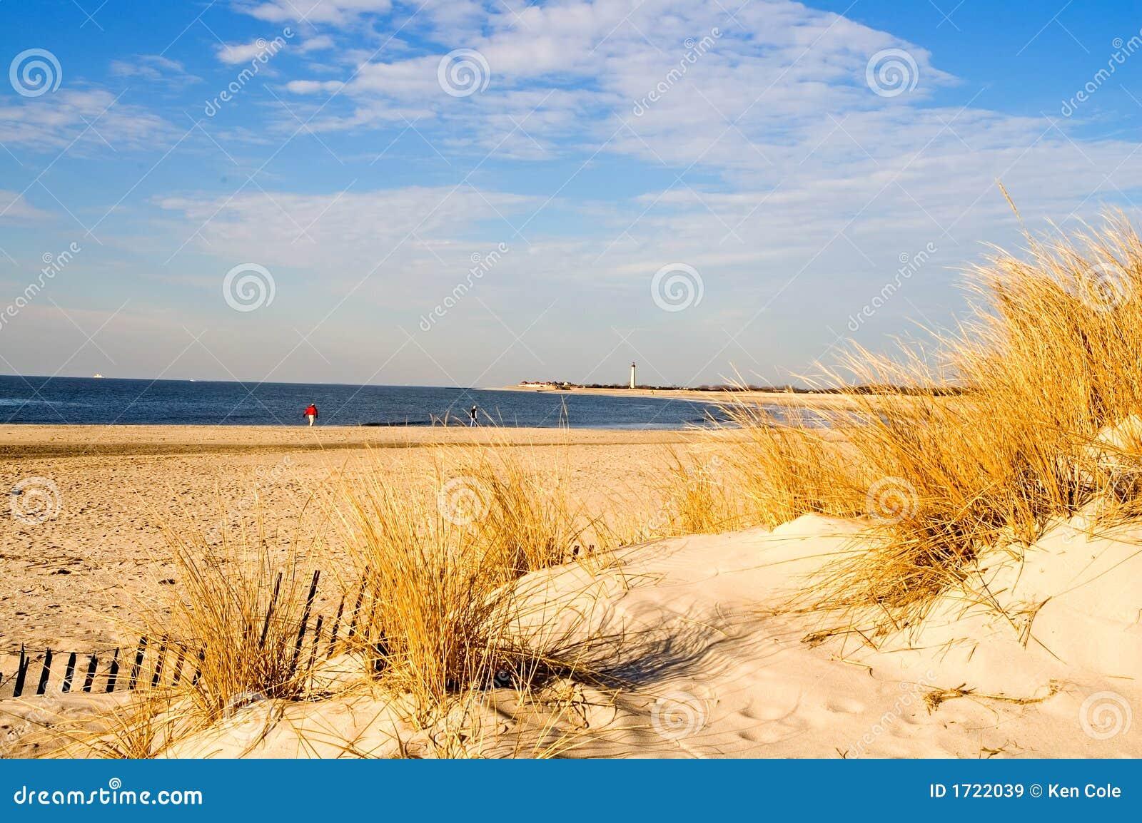 Winter Morning at the Shore