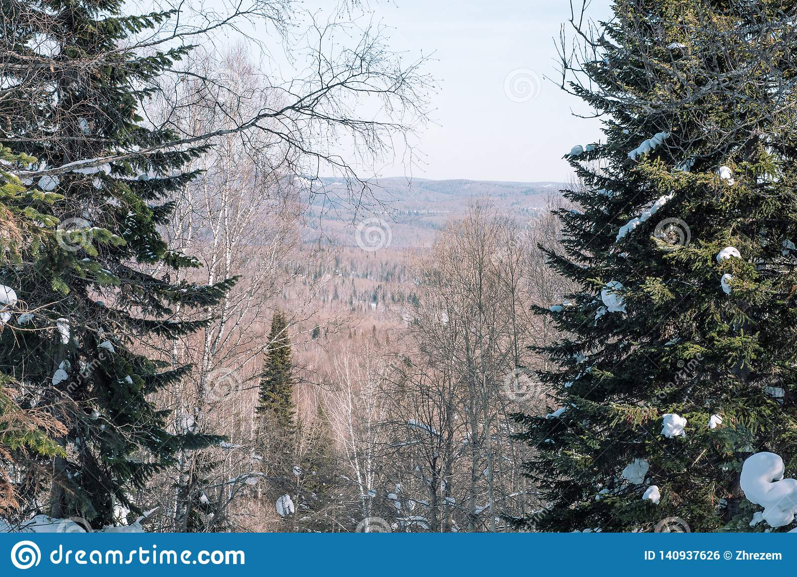 Winter mountain in the forest. View from above. Winter landscape. Winter in Siberia