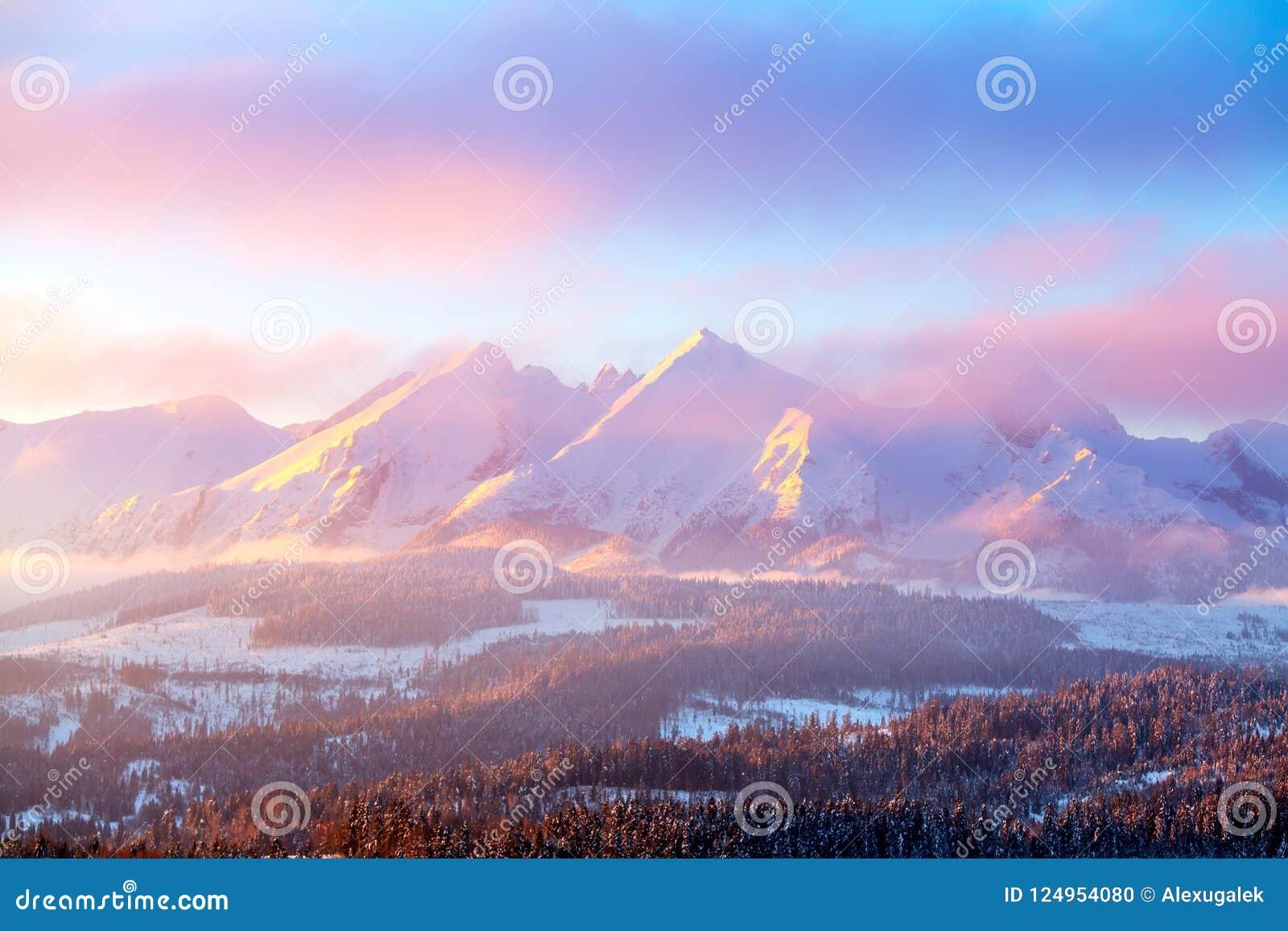 Picturesque winter nature