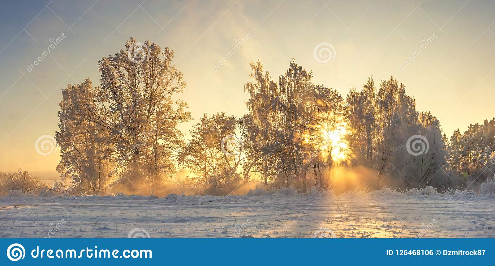 Een Warme Winter : Winter nature landscape with warm sunlight in the morning frosty