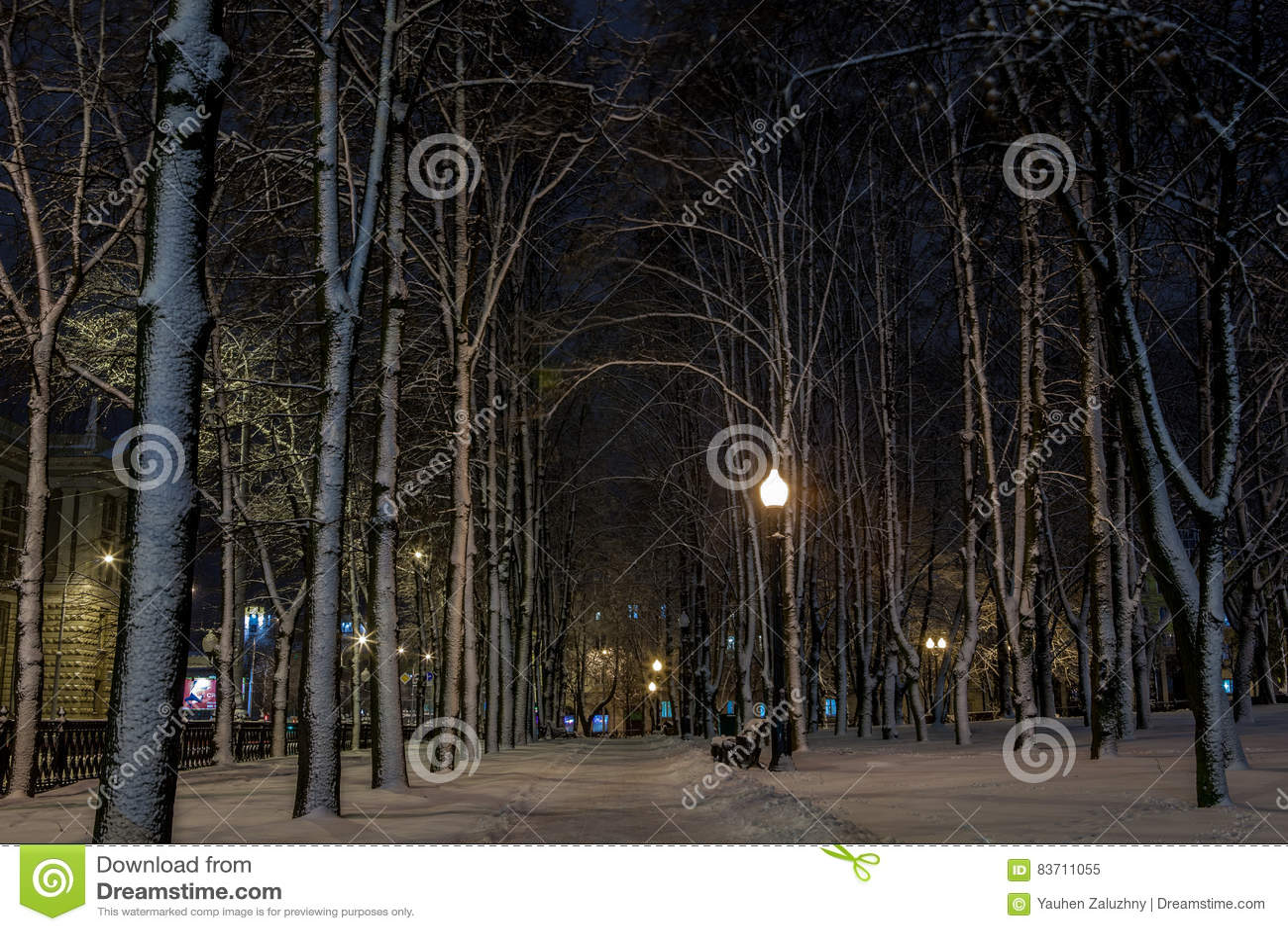Winter In The Night City Stock Photo