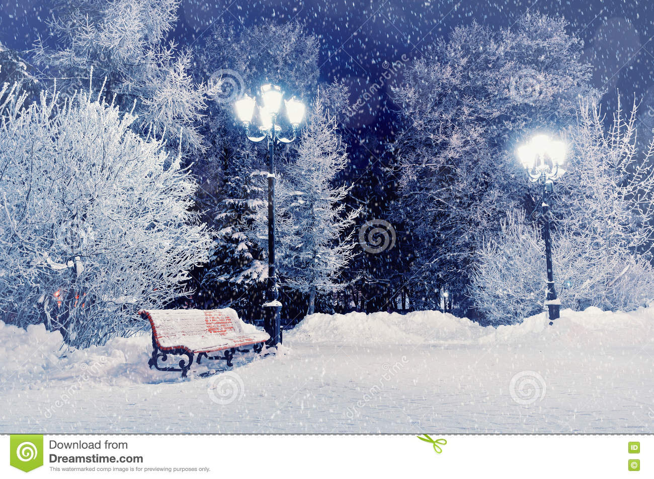Winter night landscape scene of snow covered bench among snowy winter trees and lights