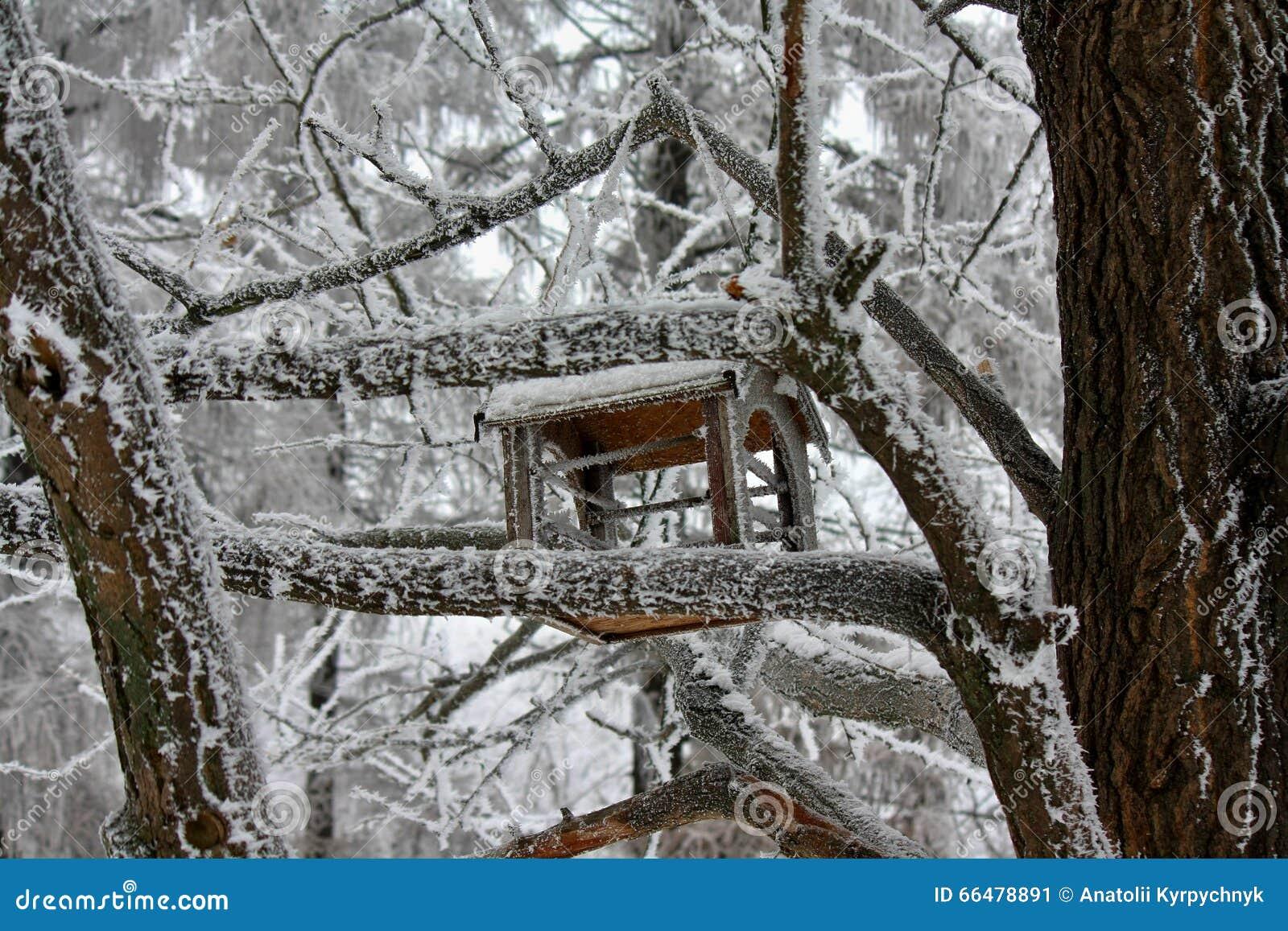 winter stock photo image 66478891