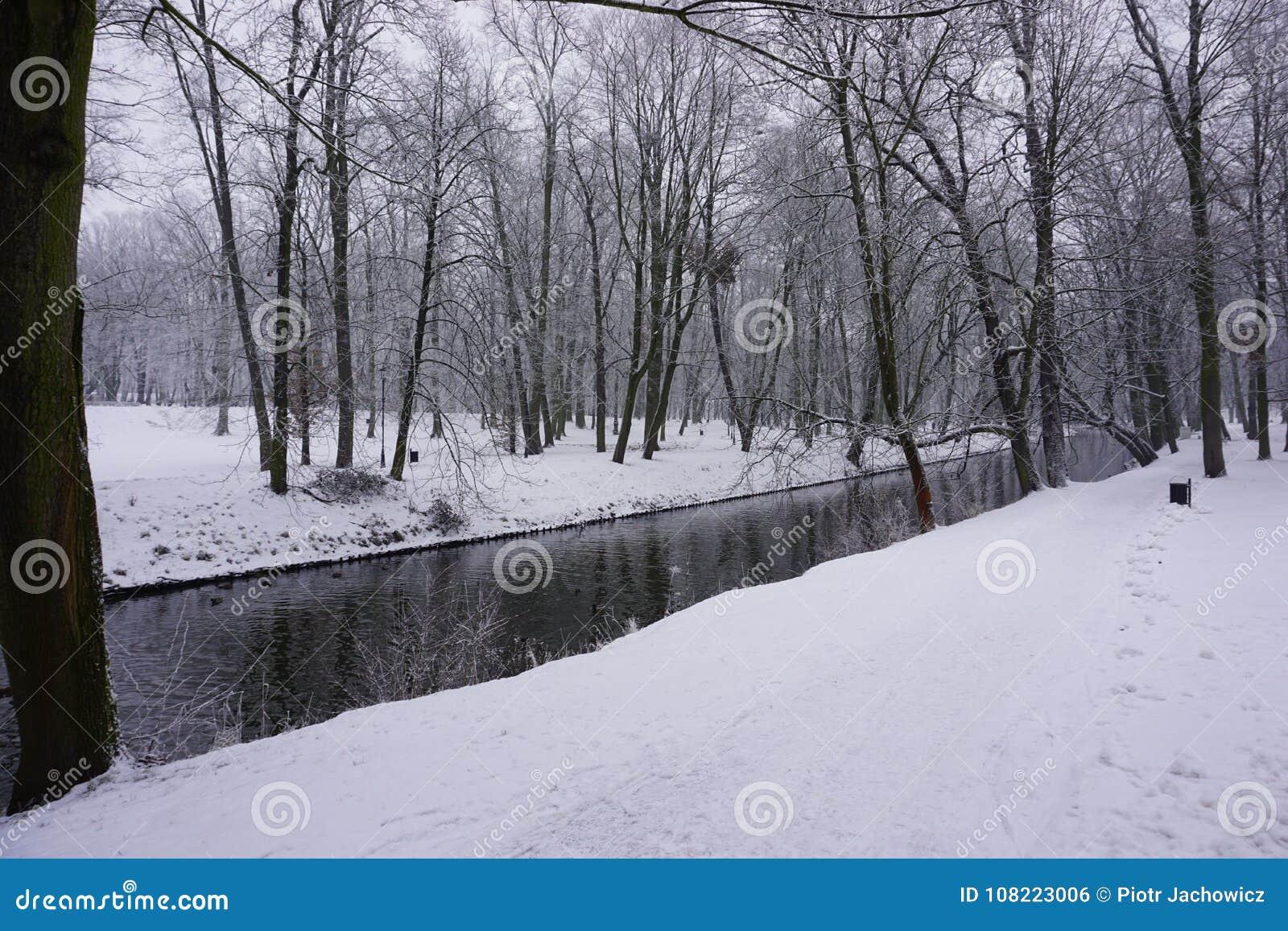 Winter in Park 3
