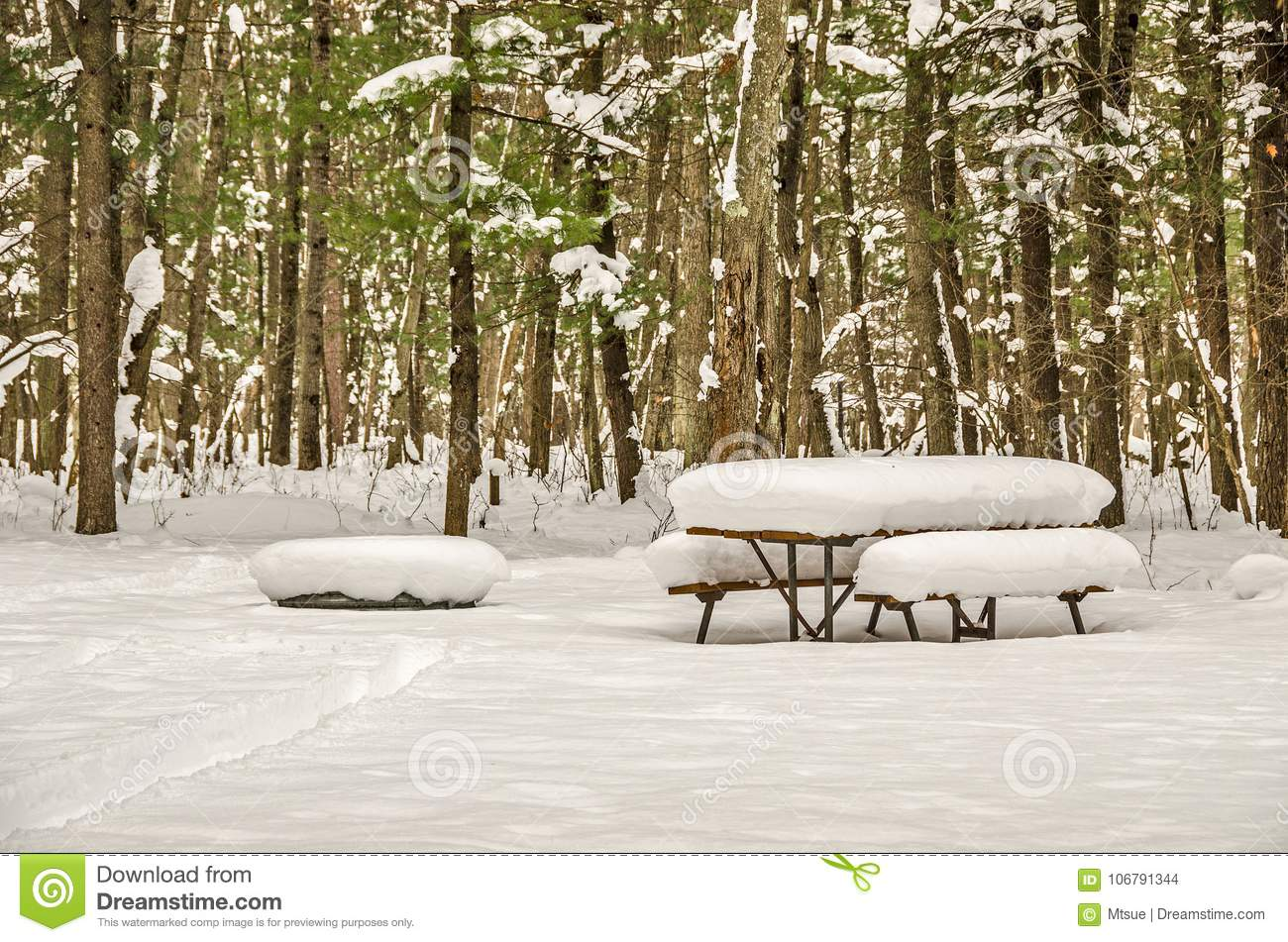 Winter Picnic Conditions Stock Photo Image Of Conditions - Fire picnic table