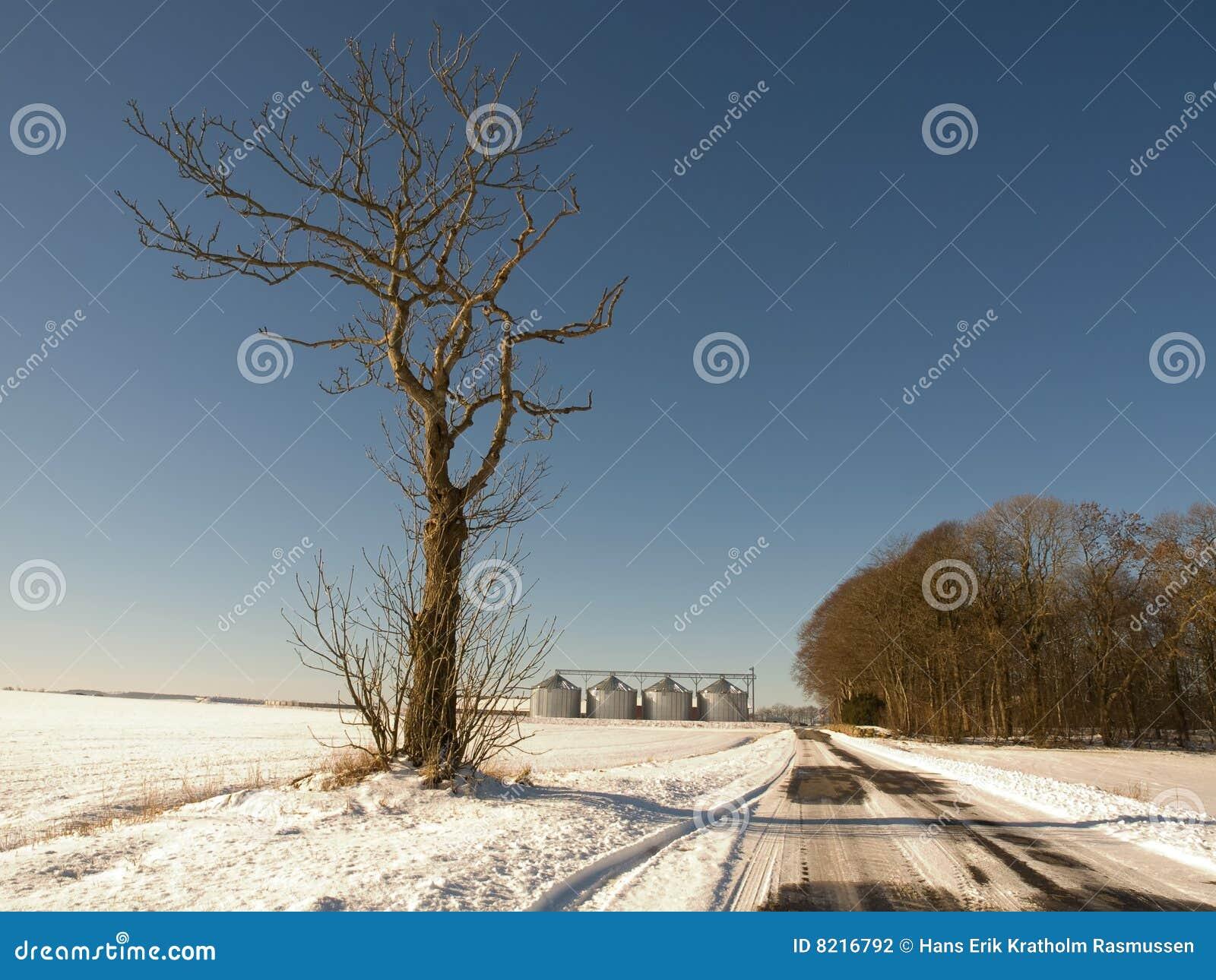Winter road and farm