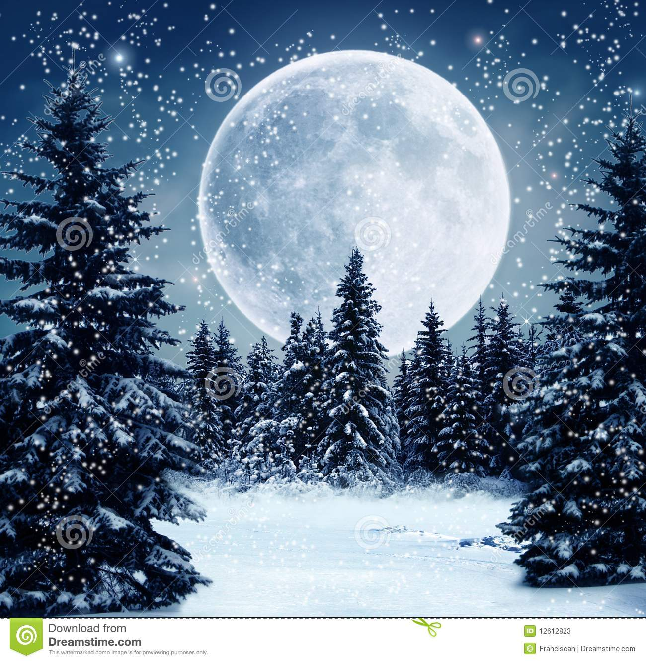 winter scene stock illustration illustration of night 12612823