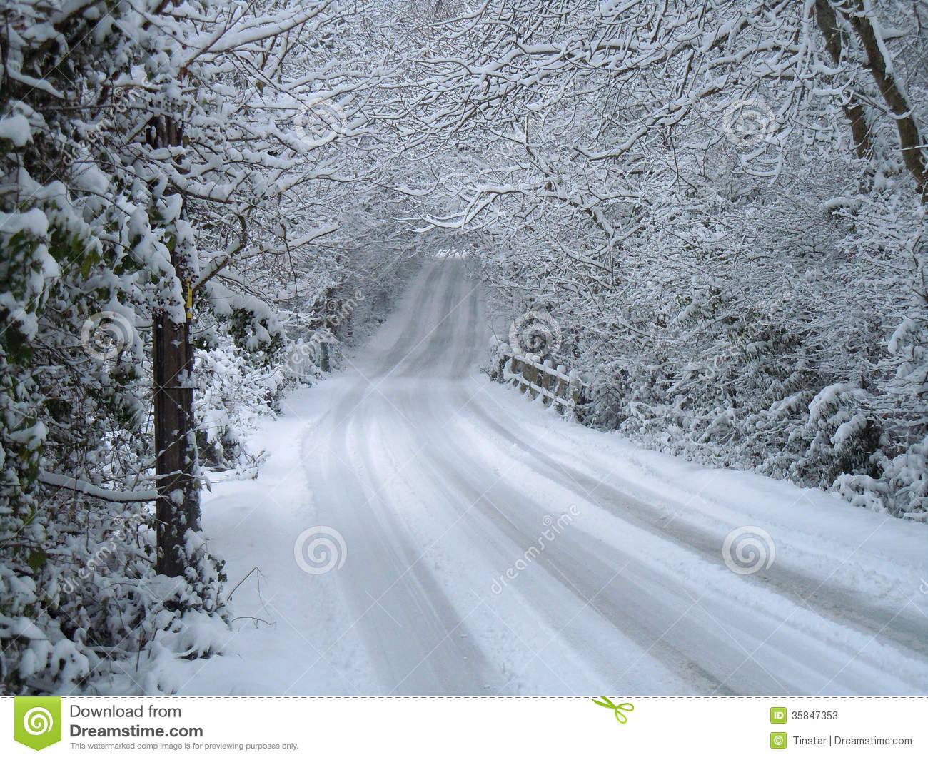 winter scene of snow covered road and trees stock image image of