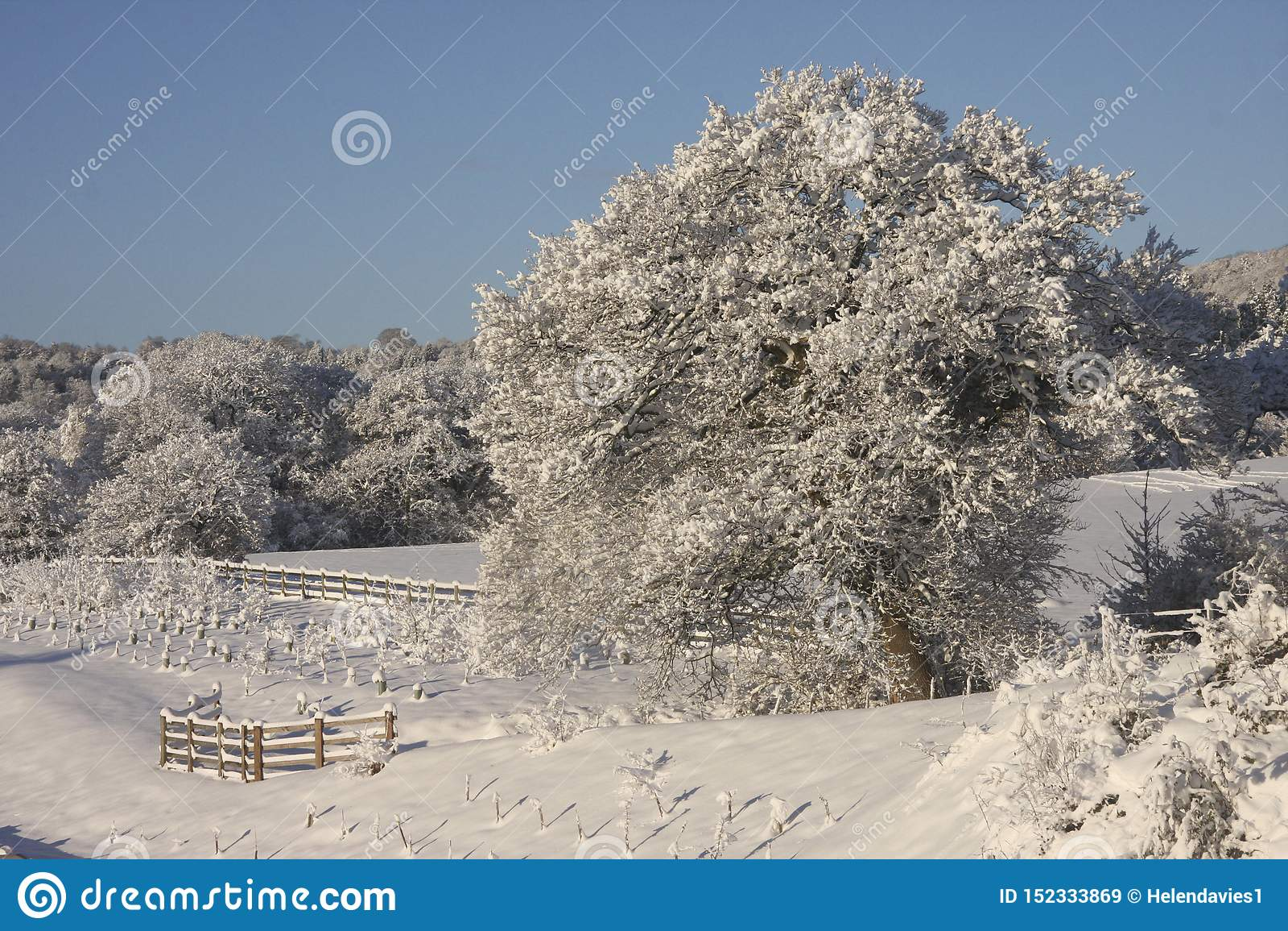 Winter-Schneelandschaft, Cardiff, Großbritannien