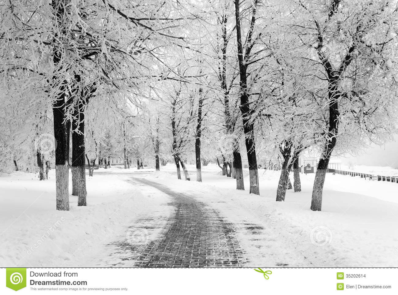 Winter Season In City Stock Images Image 35202614