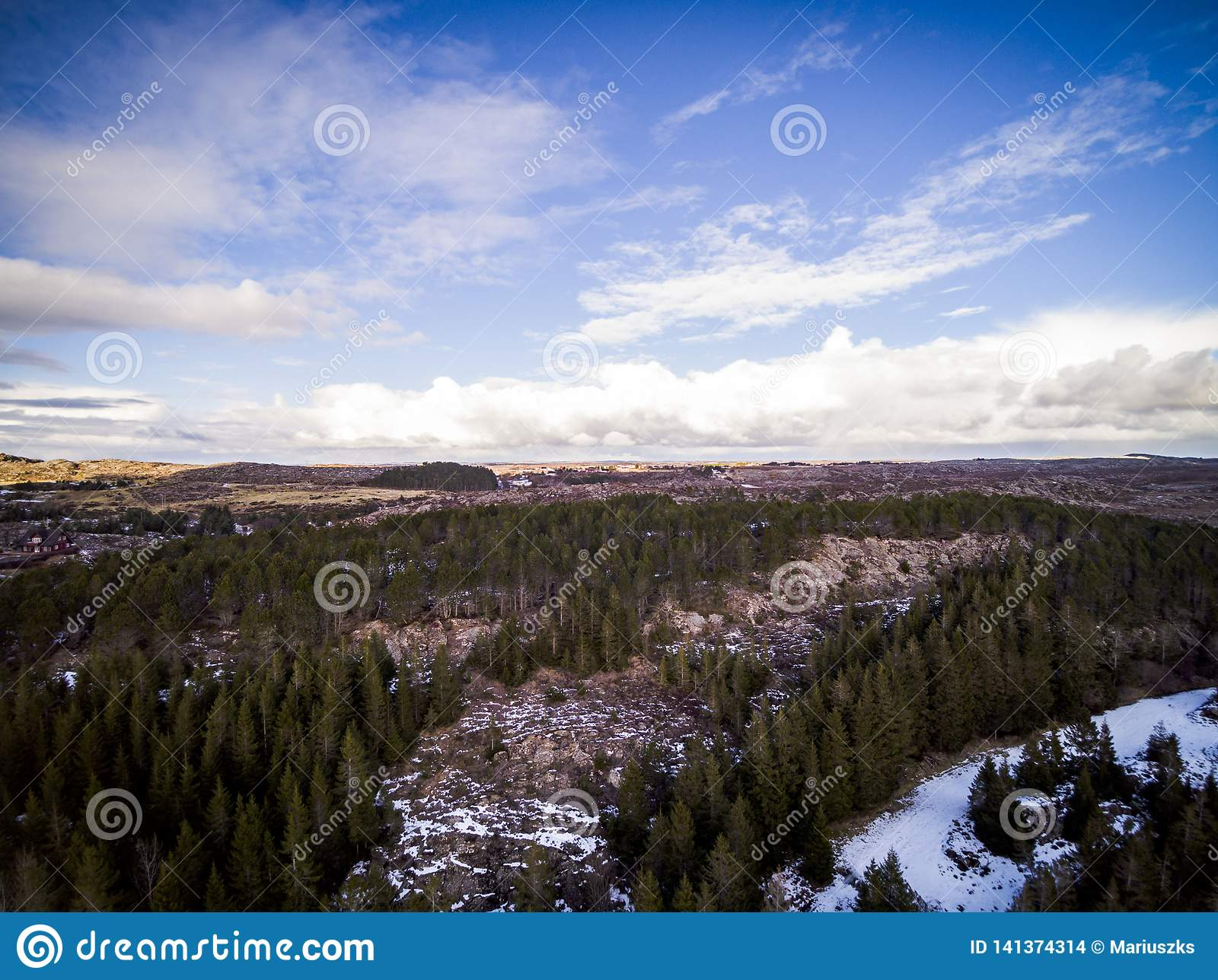 Winter Snow Forest And Frozen From Above Captured With A