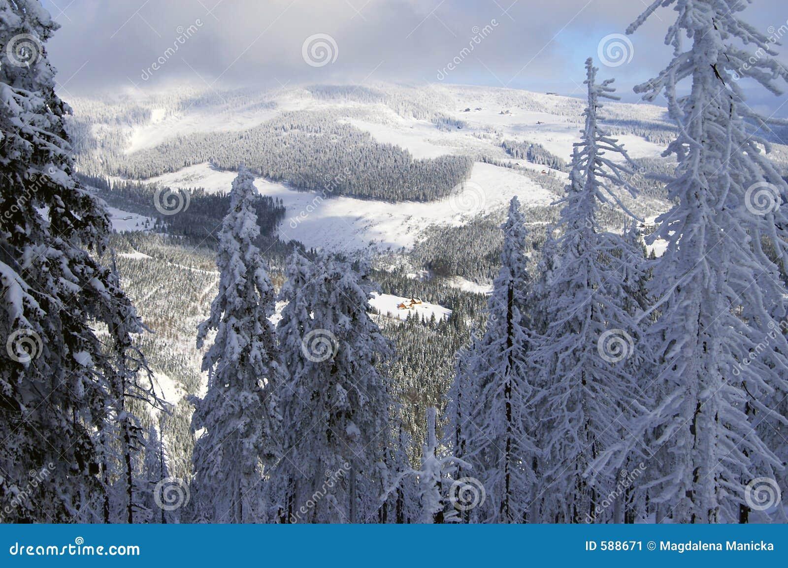 Winter in Spindlerov Mlyn