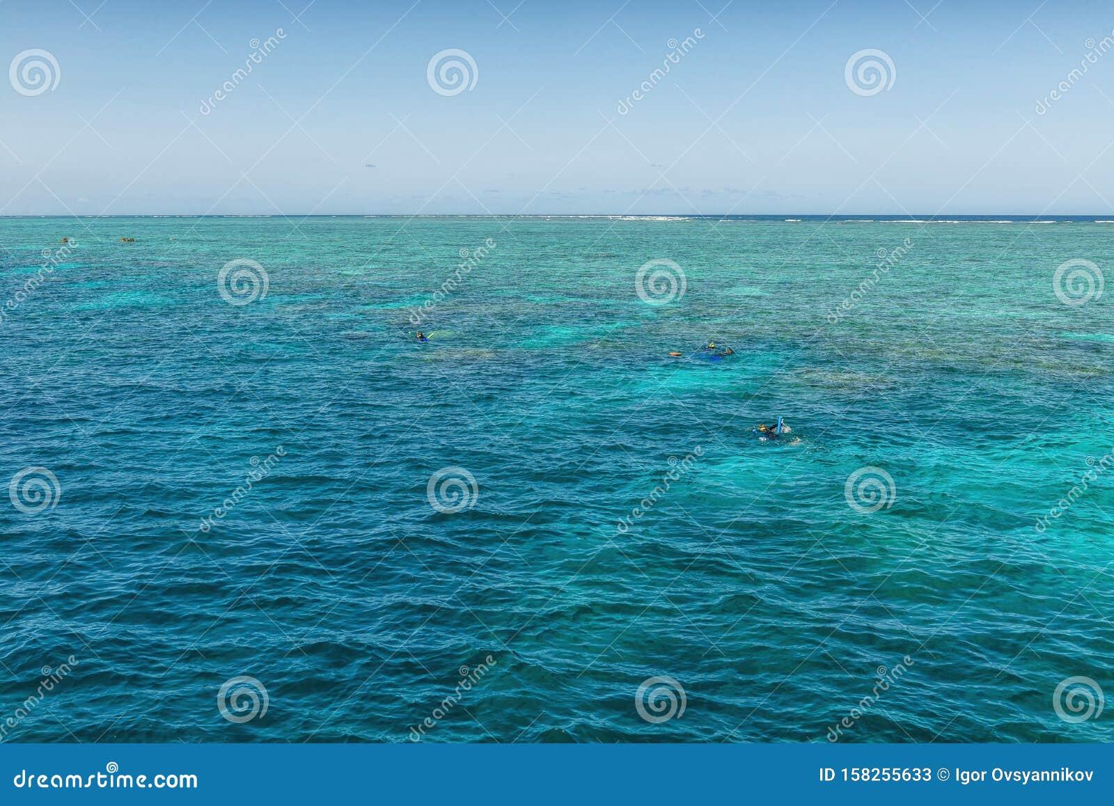 Winter sunny day on the Great Barrier Reef, Queensland, Port Douglas, Australia