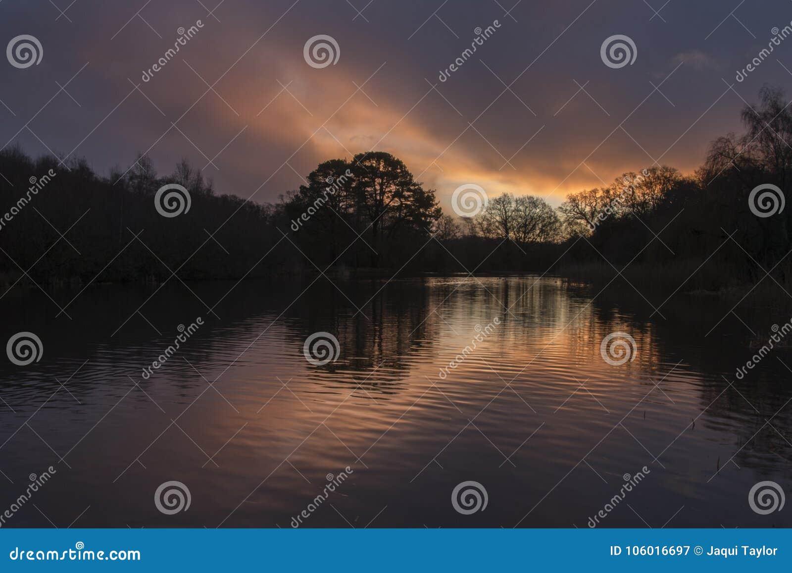 Sunrise at the Ornamental Pond, Southampton Common