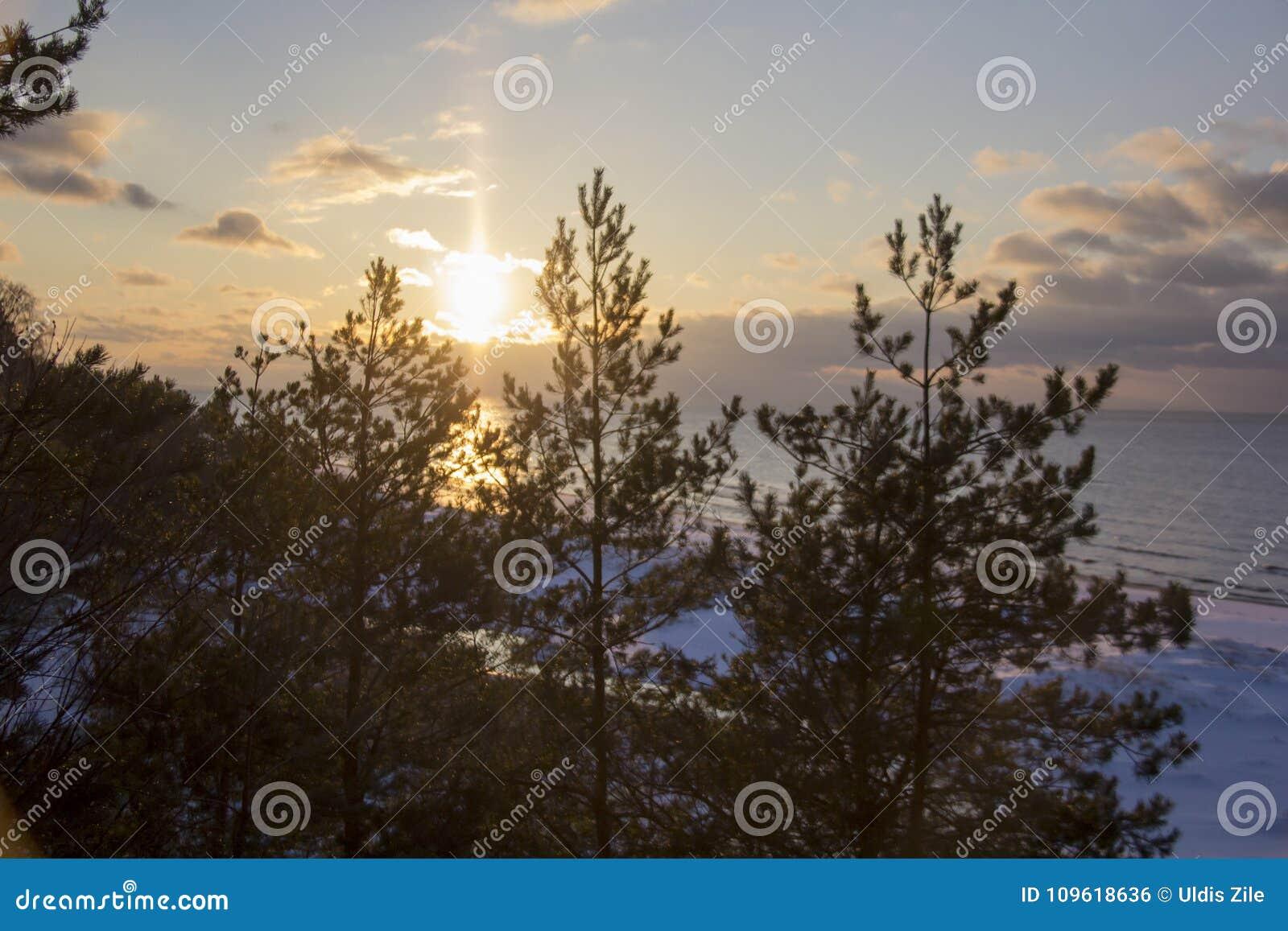 Winter sunrise snow baltic beach, latvia, saulkrasti