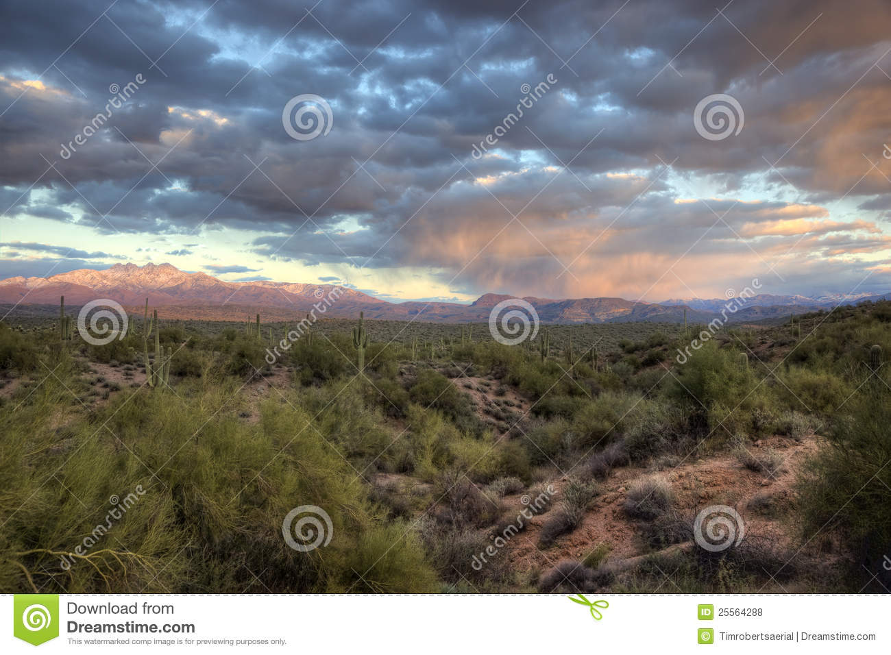 Winter Sunset, Sonoran Desert
