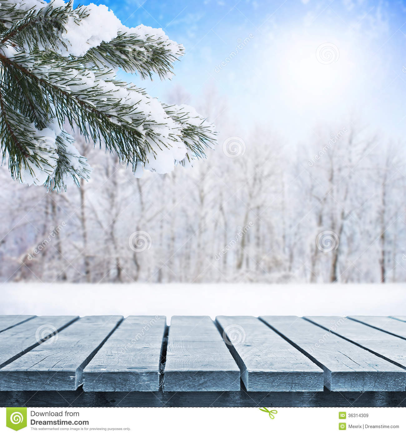 winter table stock image image of plants frost picnic