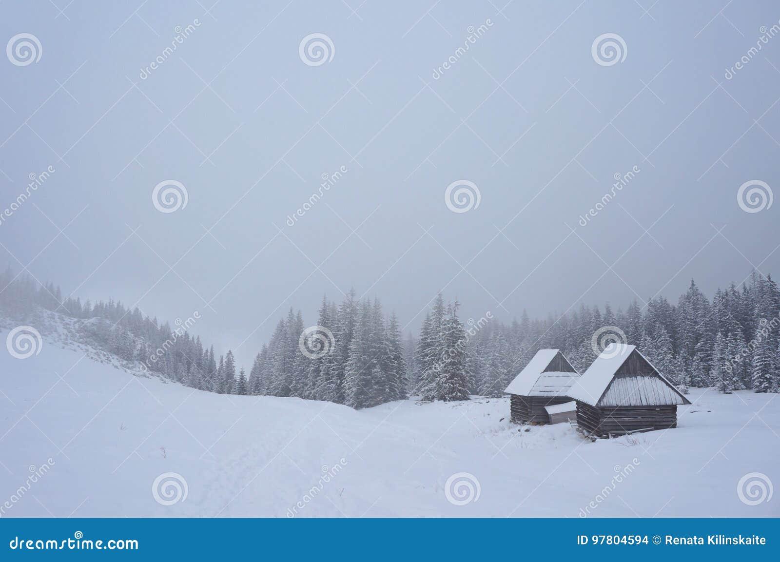 Winter in Tatra Bergen