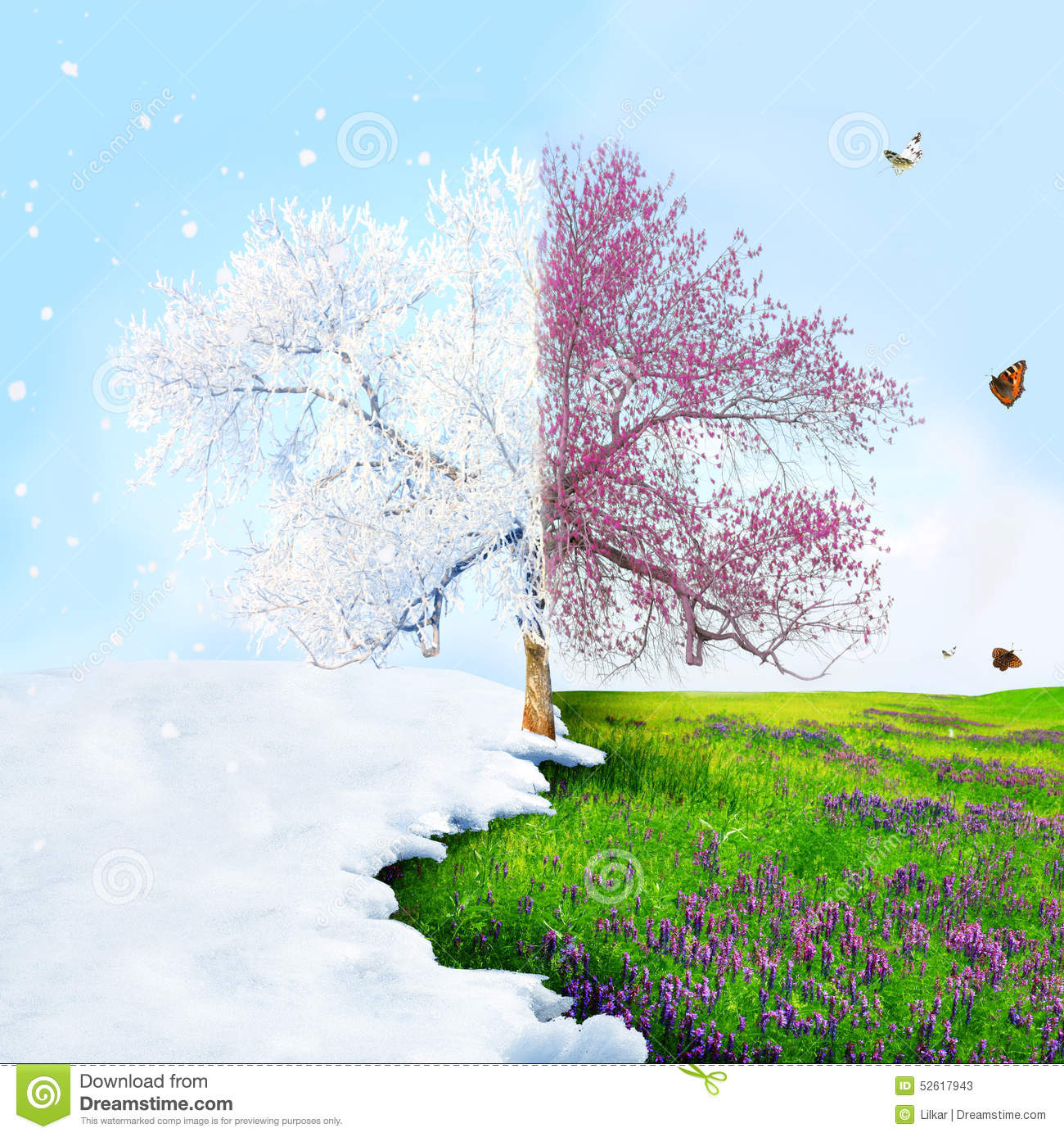 From Winter To Spring Stock Photo - Image: 52617943