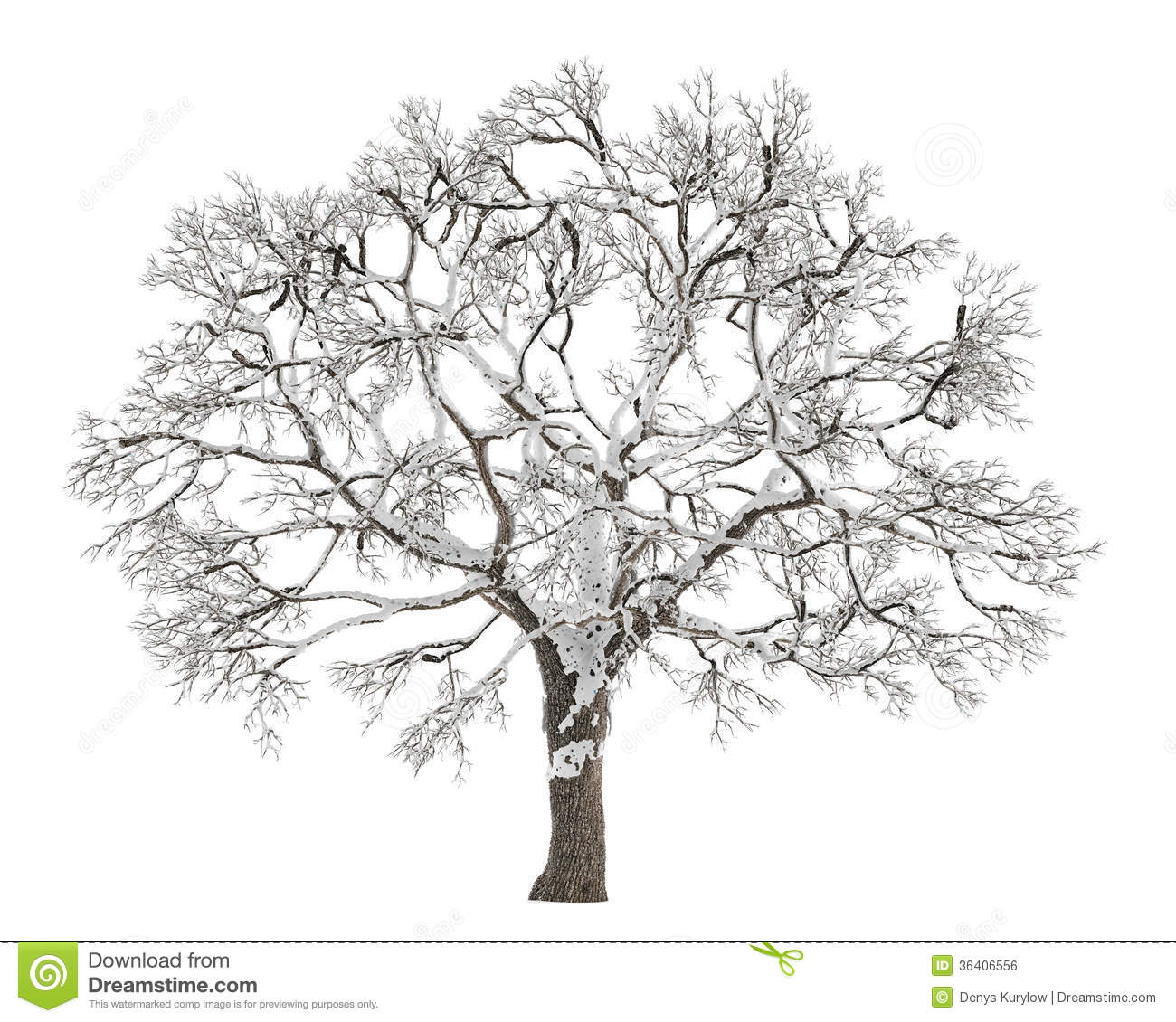 Tree, Winter, Grey, Perennial, Dried, No Leaves - Branches On A Tree Clipart  (#569942) - PinClipart
