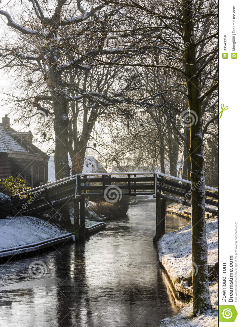 Winter With Trees In Giethoorn Stock Photo Image Of Culture