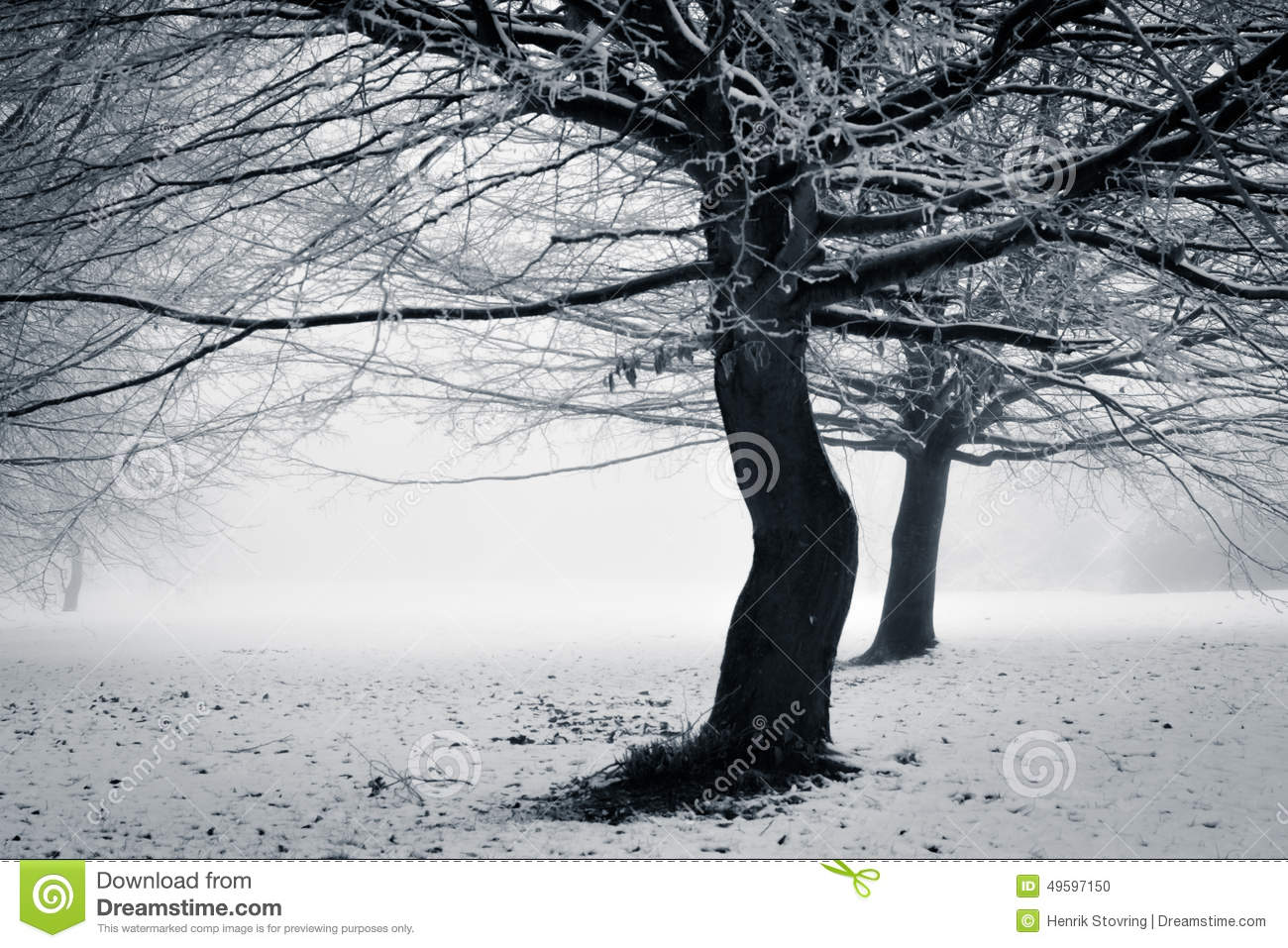Winter - with a twist