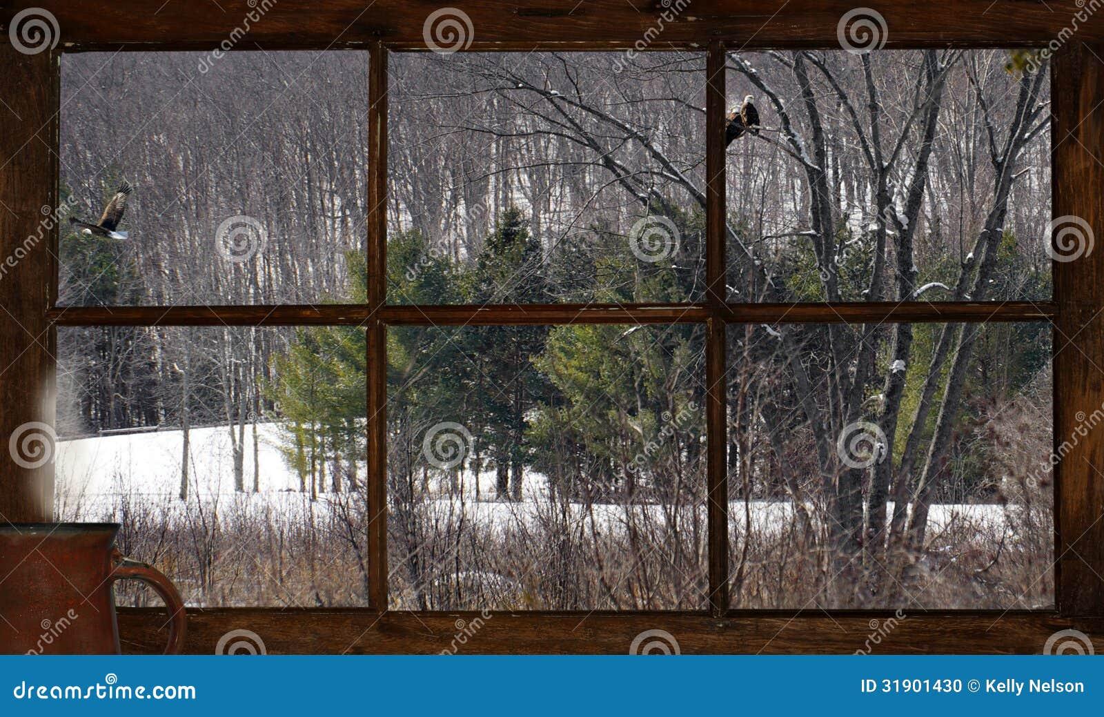 Winter View Stock Photo Image 31901430