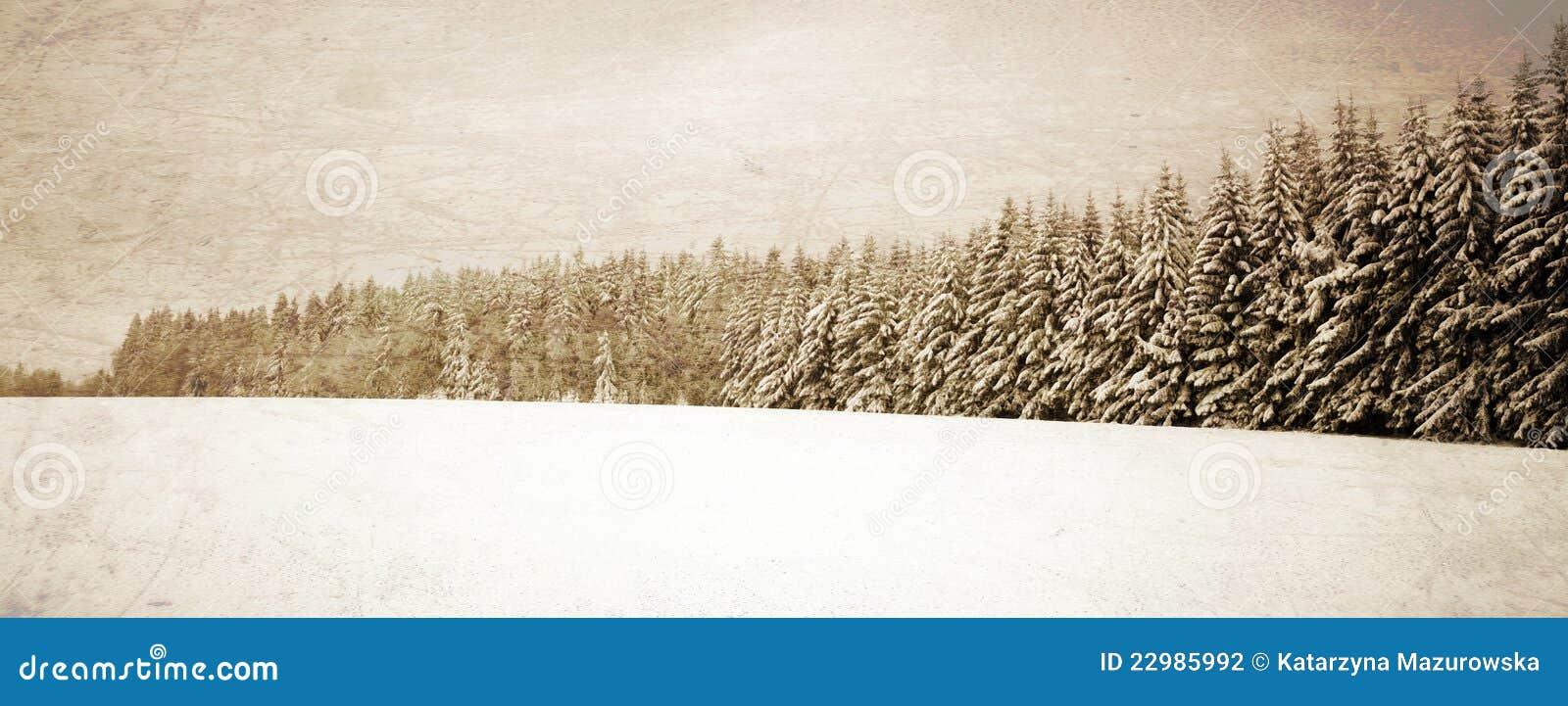 Winter Vintage Landscape Stock Photography - Image: 22985992