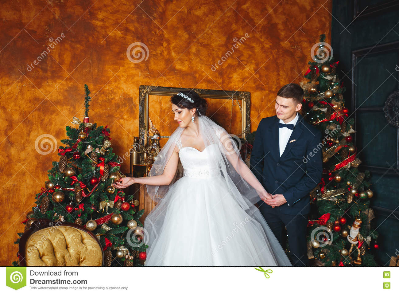 Winter Wedding Lovers Bride And Groom In Christmas Decoration