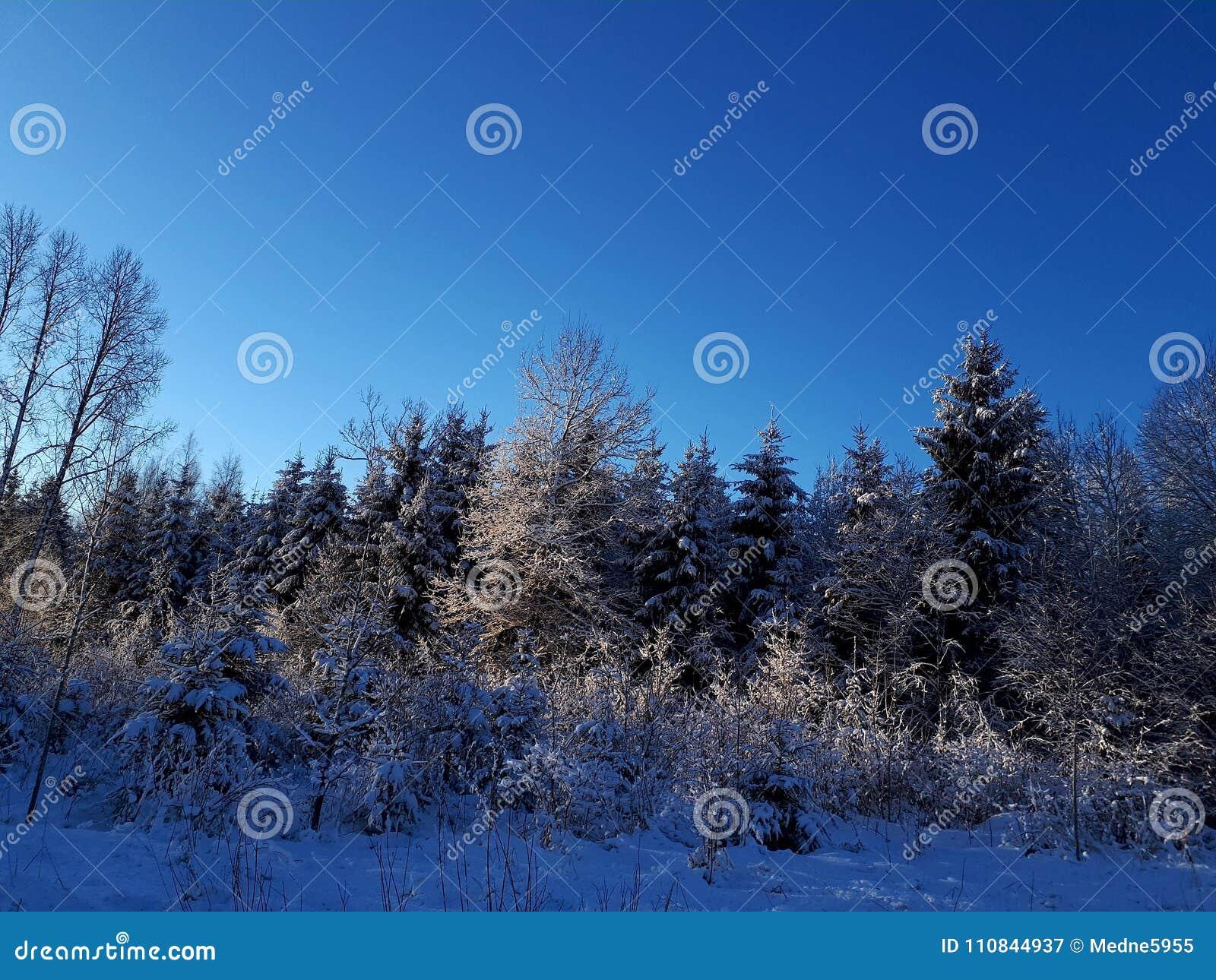 Winter wonderland countryside peace beautiful