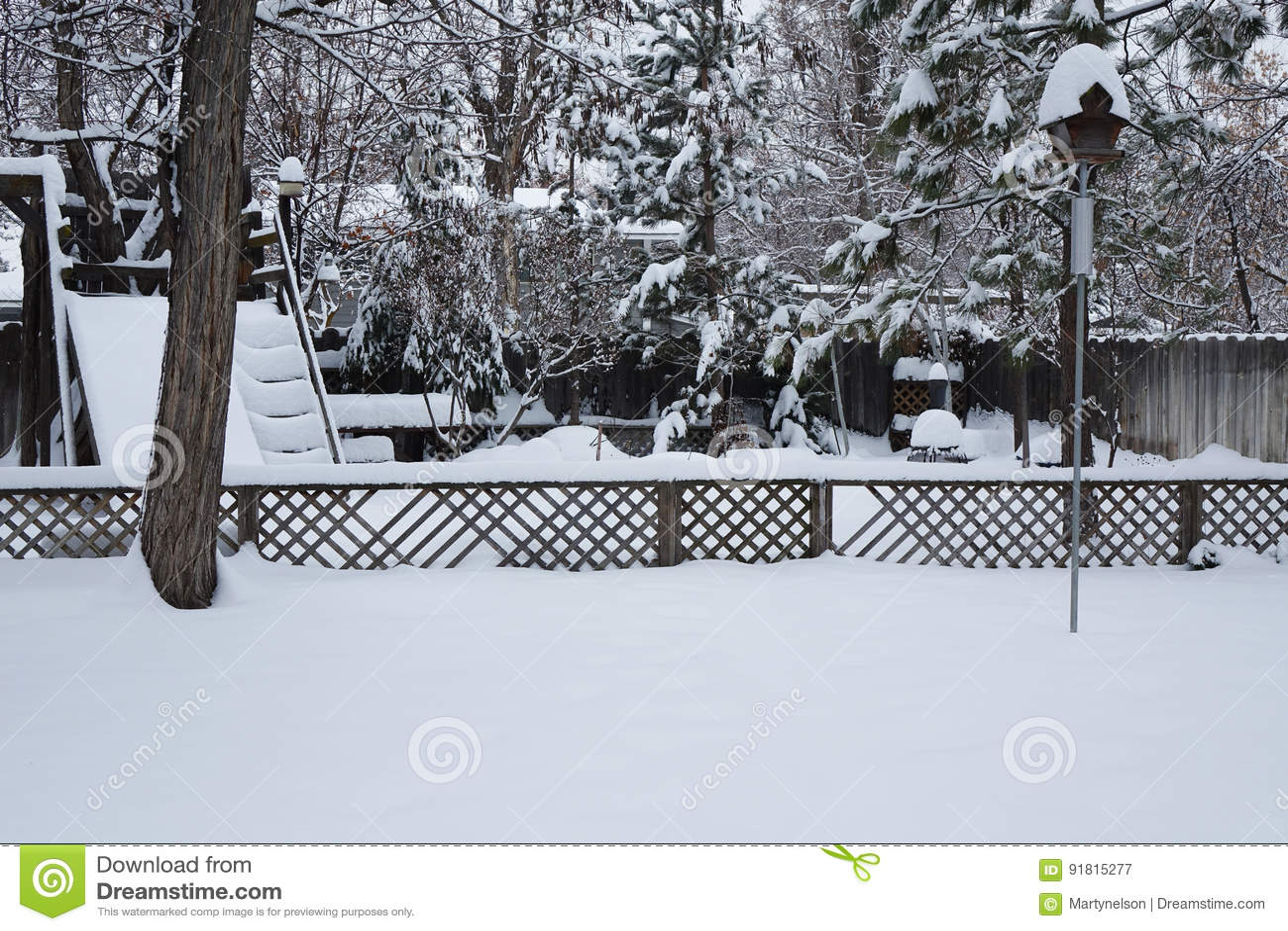 Winter Wonderland of Deep Snow