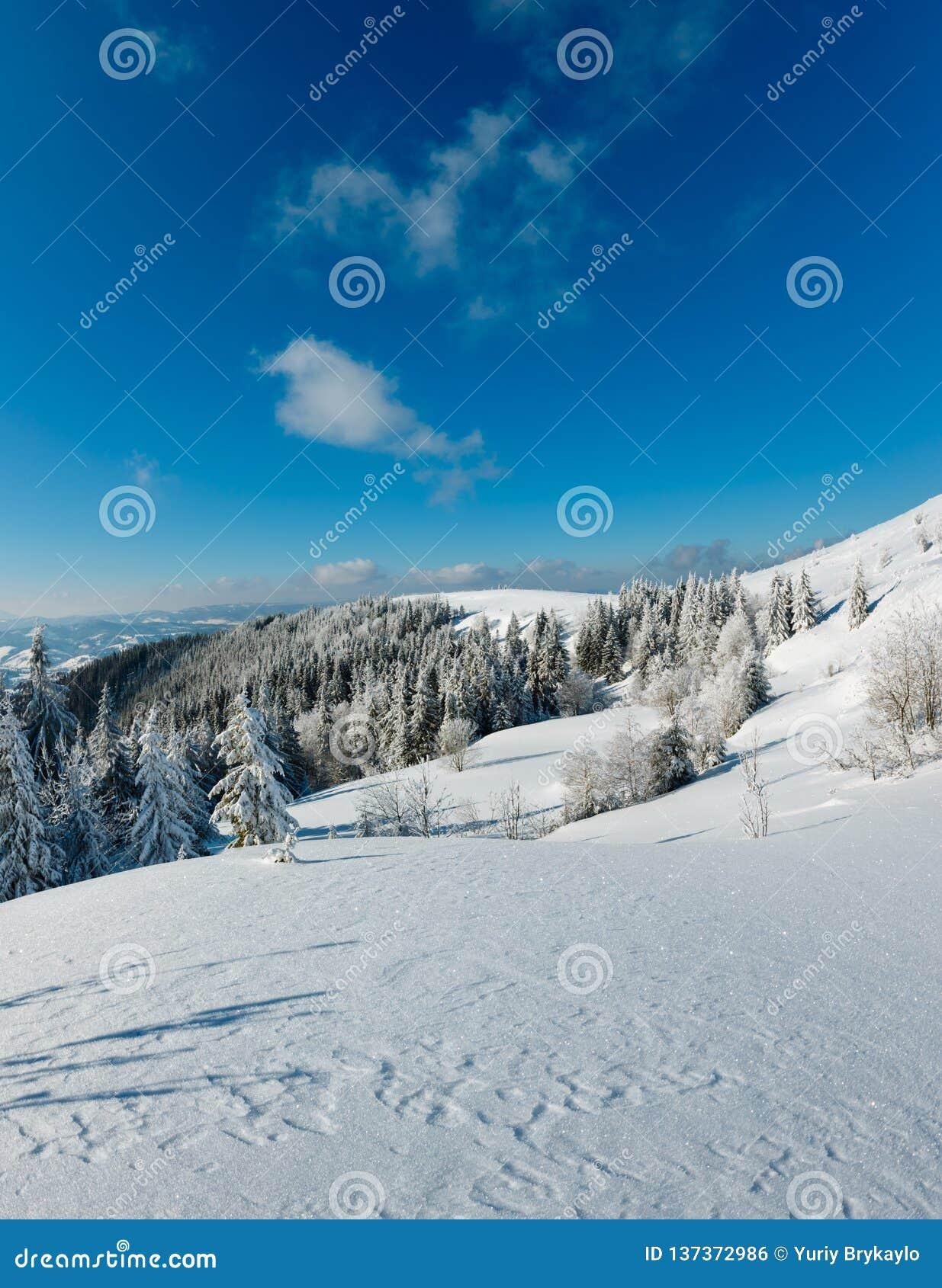 Wintergebirgsschneebedeckte Landschaft