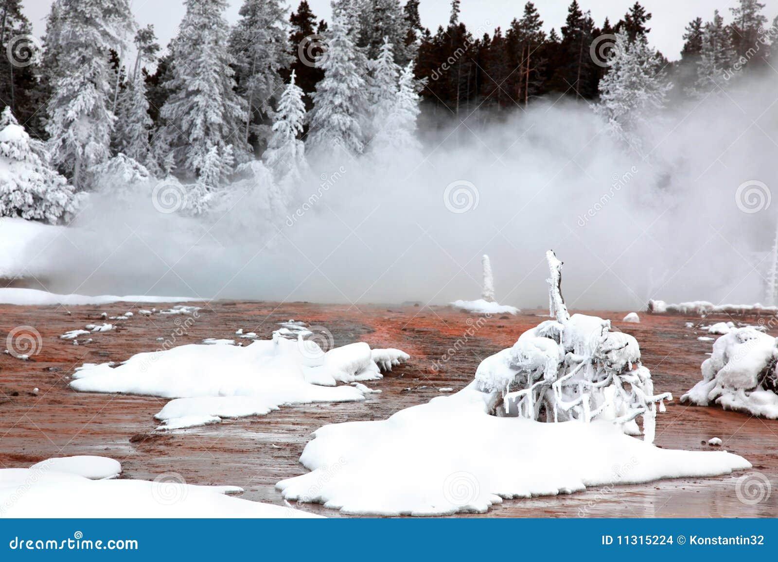 Winterjahreszeit in Nationalpark